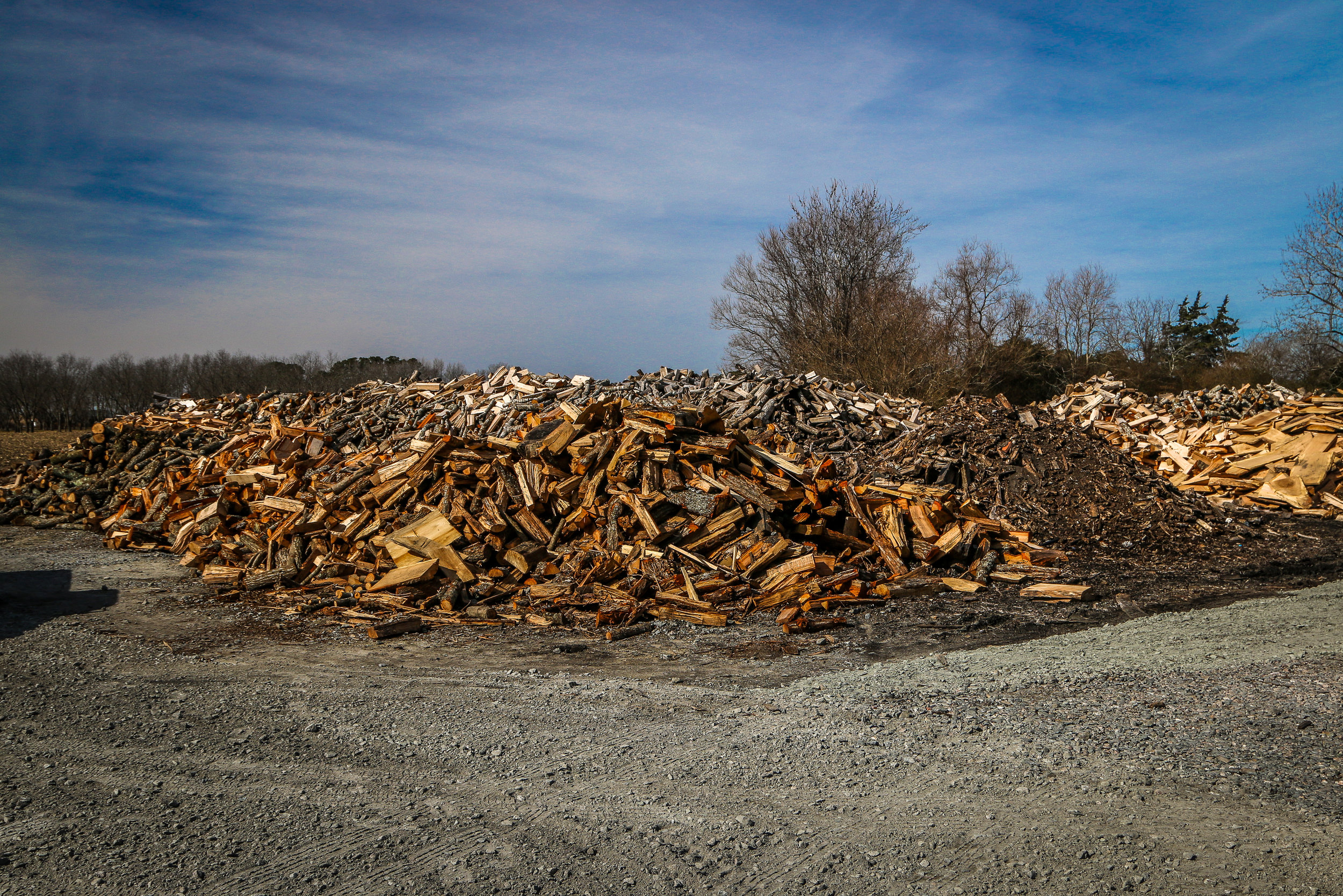 Piles and Piles of Wood