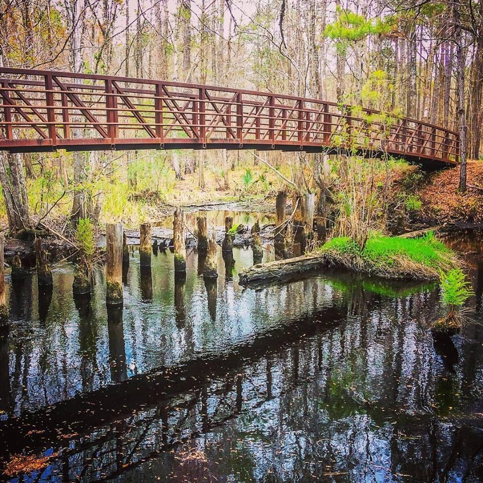 Along the Swamp Fox Passage