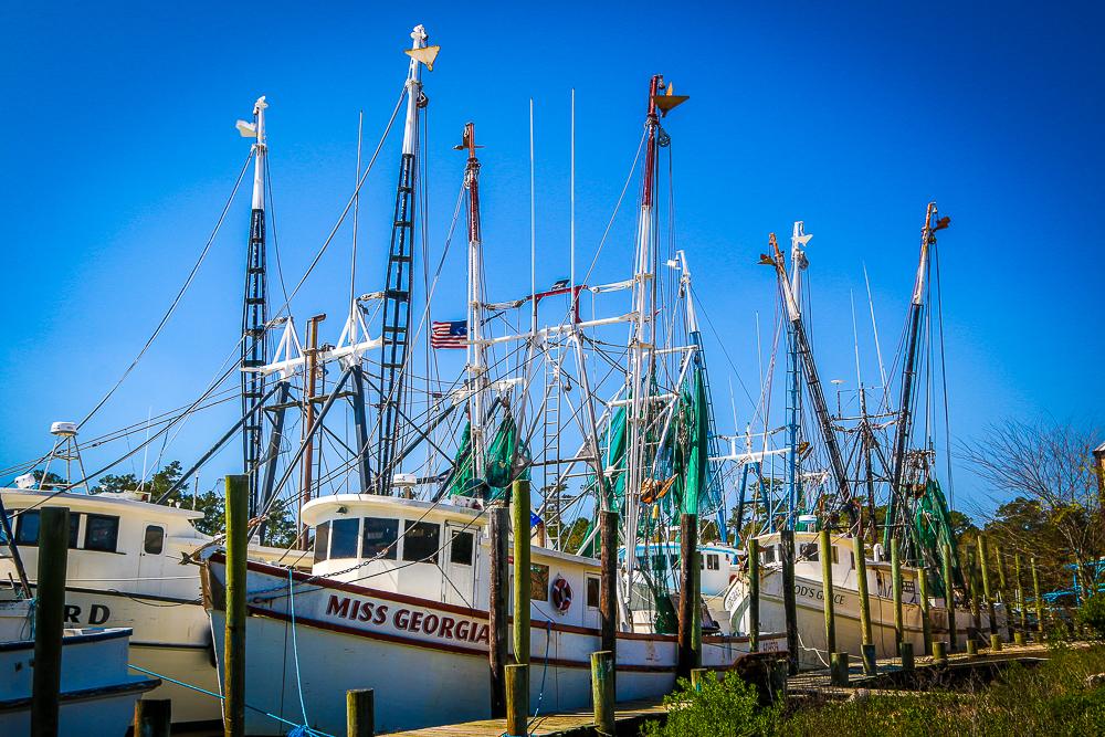 Shrimp Fleet at McClellanville