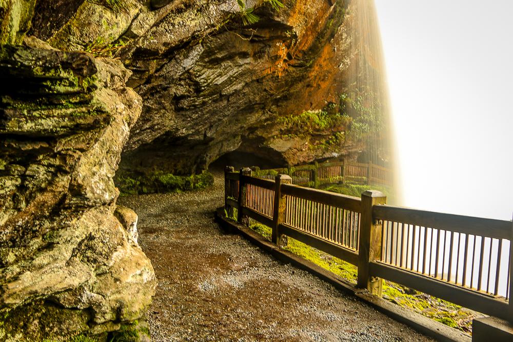 "Trail Behind ""Dry Falls"""