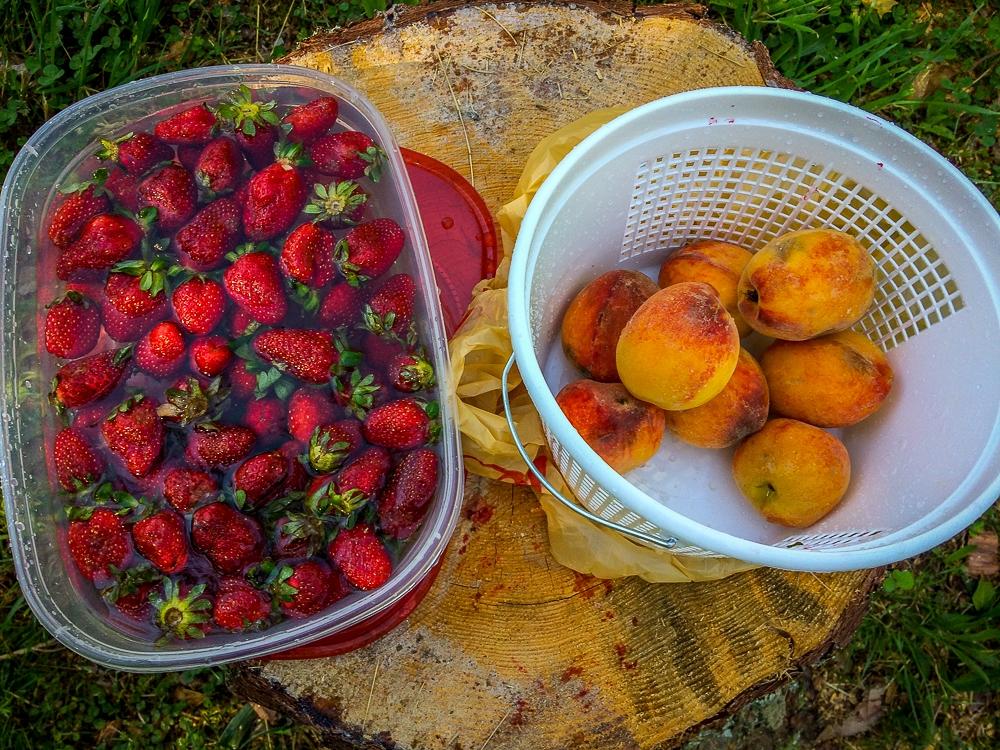 Farm Fresh Peaches and Strawberries