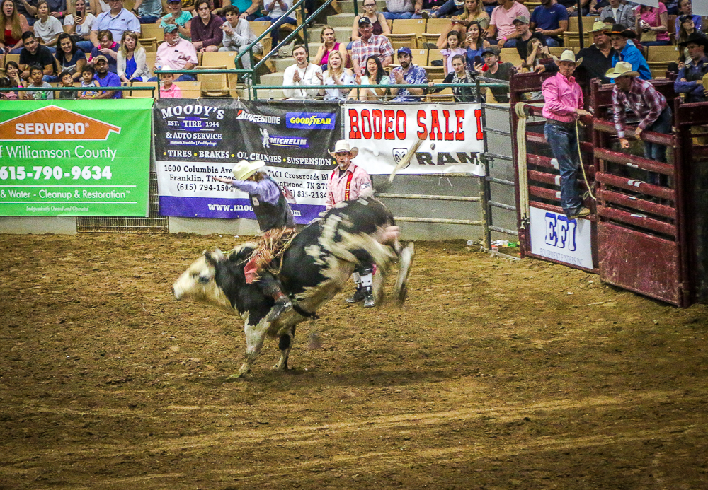 Bull Riding - Franklin Rodeo