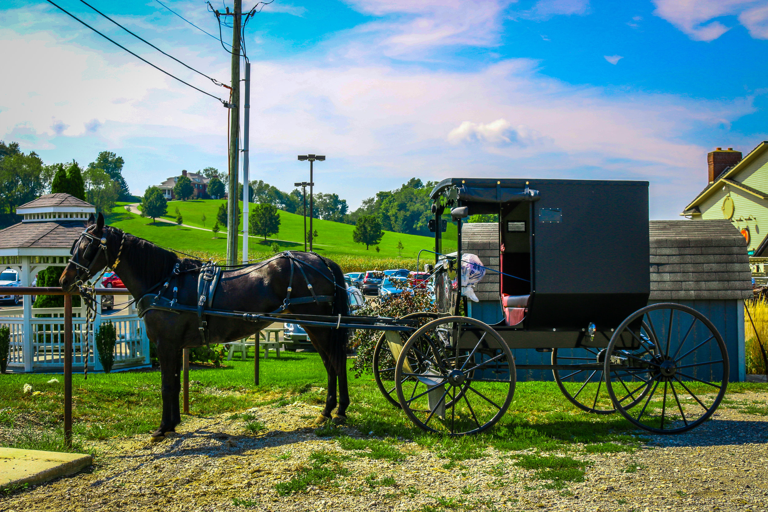 horse and buggy amish country ohio