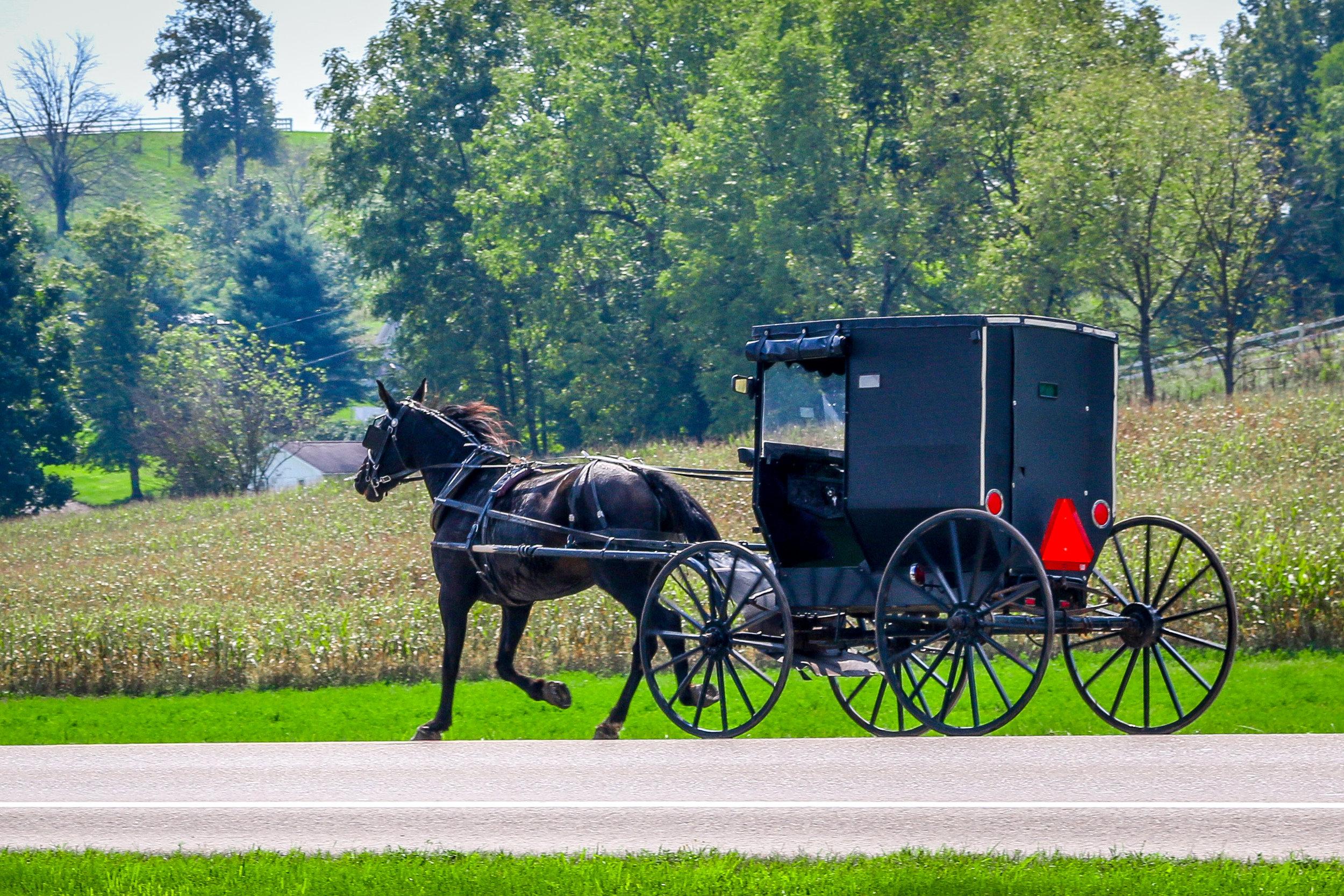 Amish Country Ohio