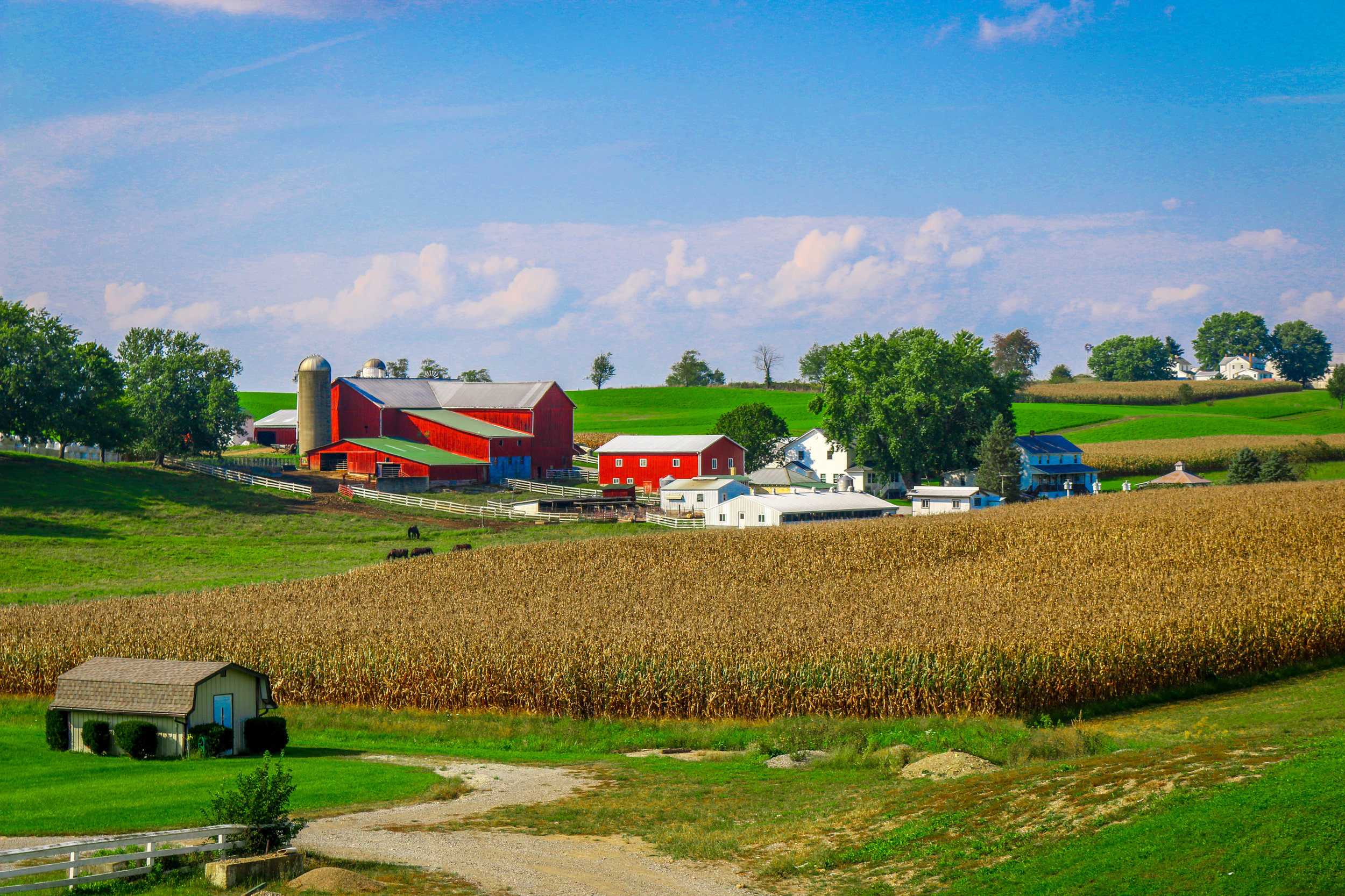 Amish country Ohio Holmes County
