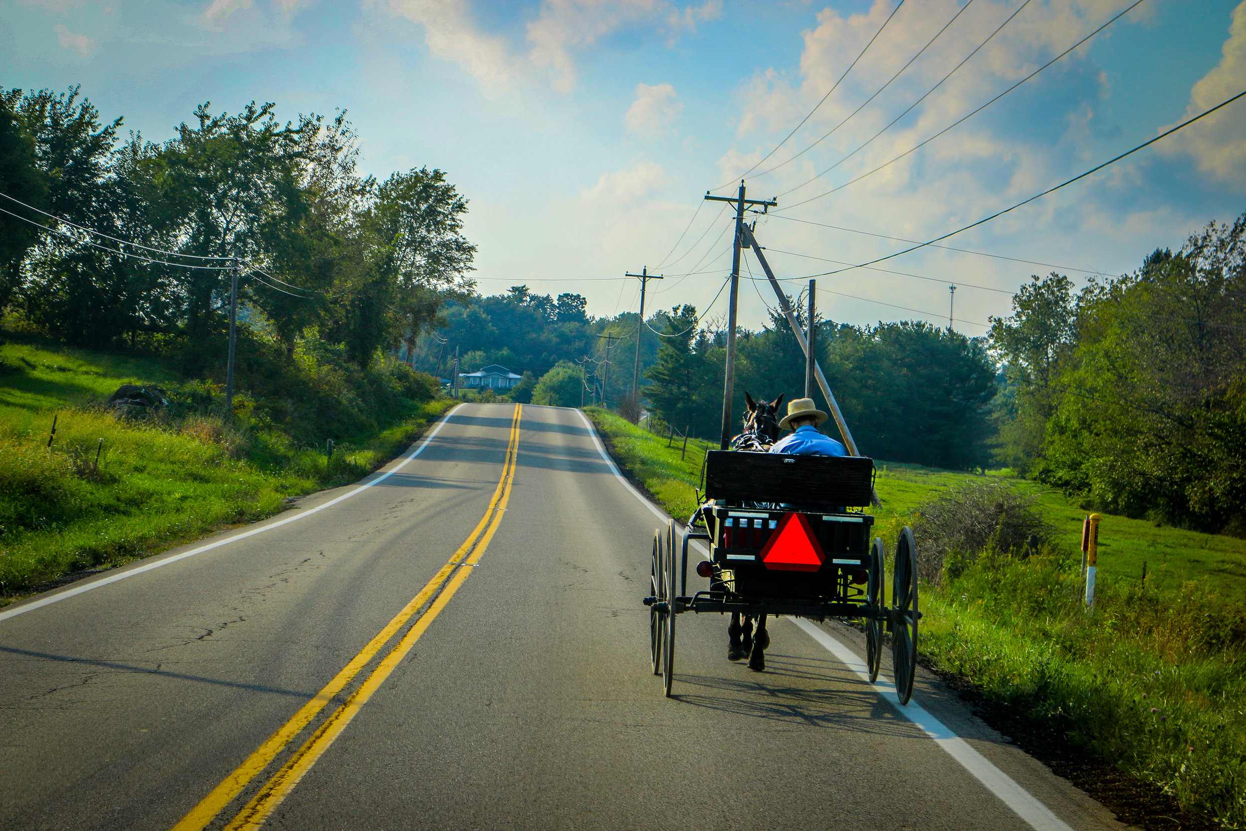 Amish Country Ohio horse and buggy