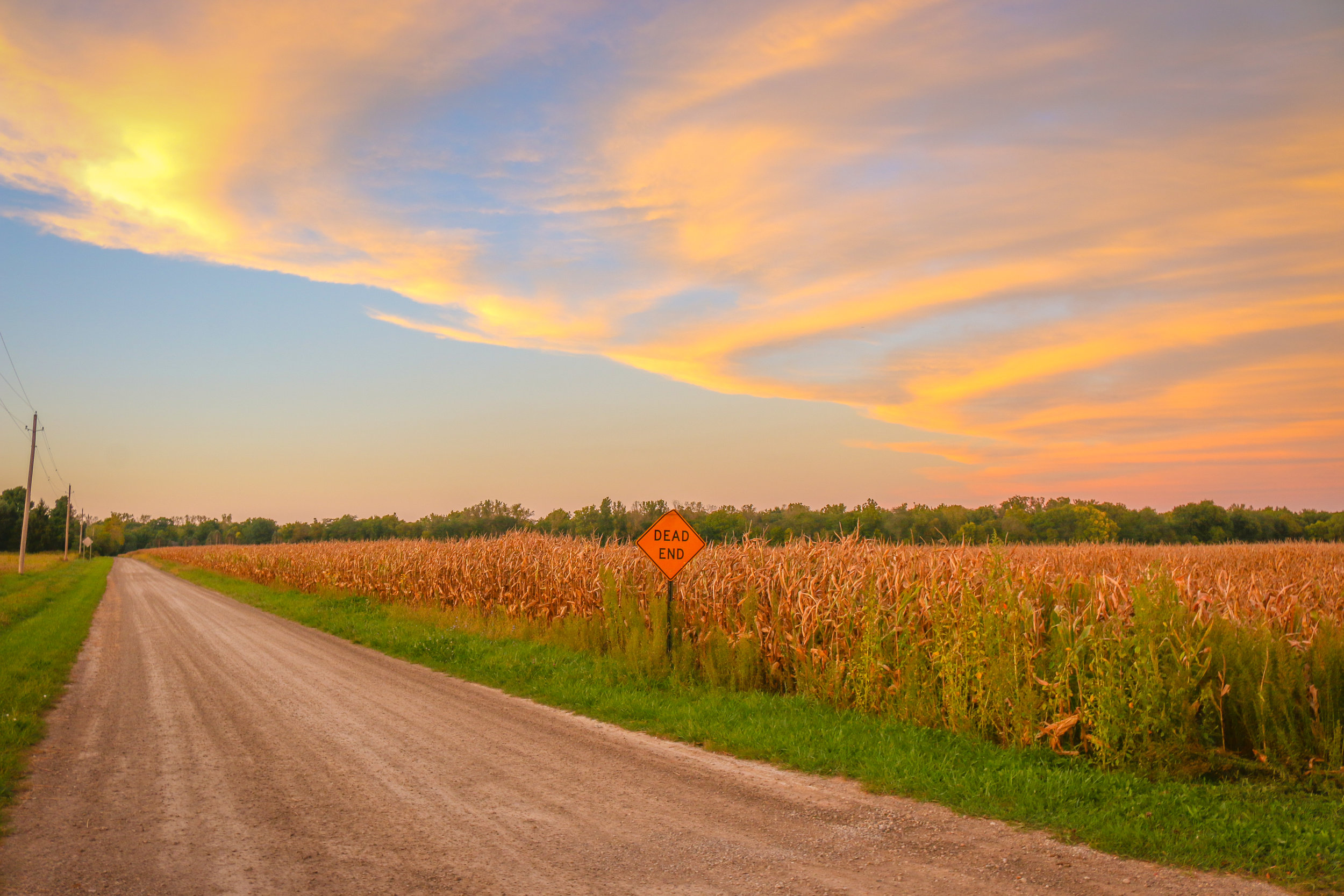 Sunsets and Corn Fields in Southern Michigan