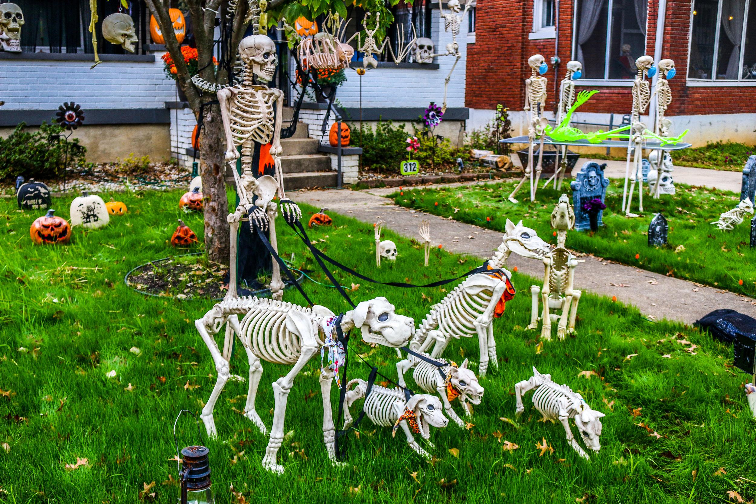 Halloween Decorations Hillcrest Louisville Kentucky