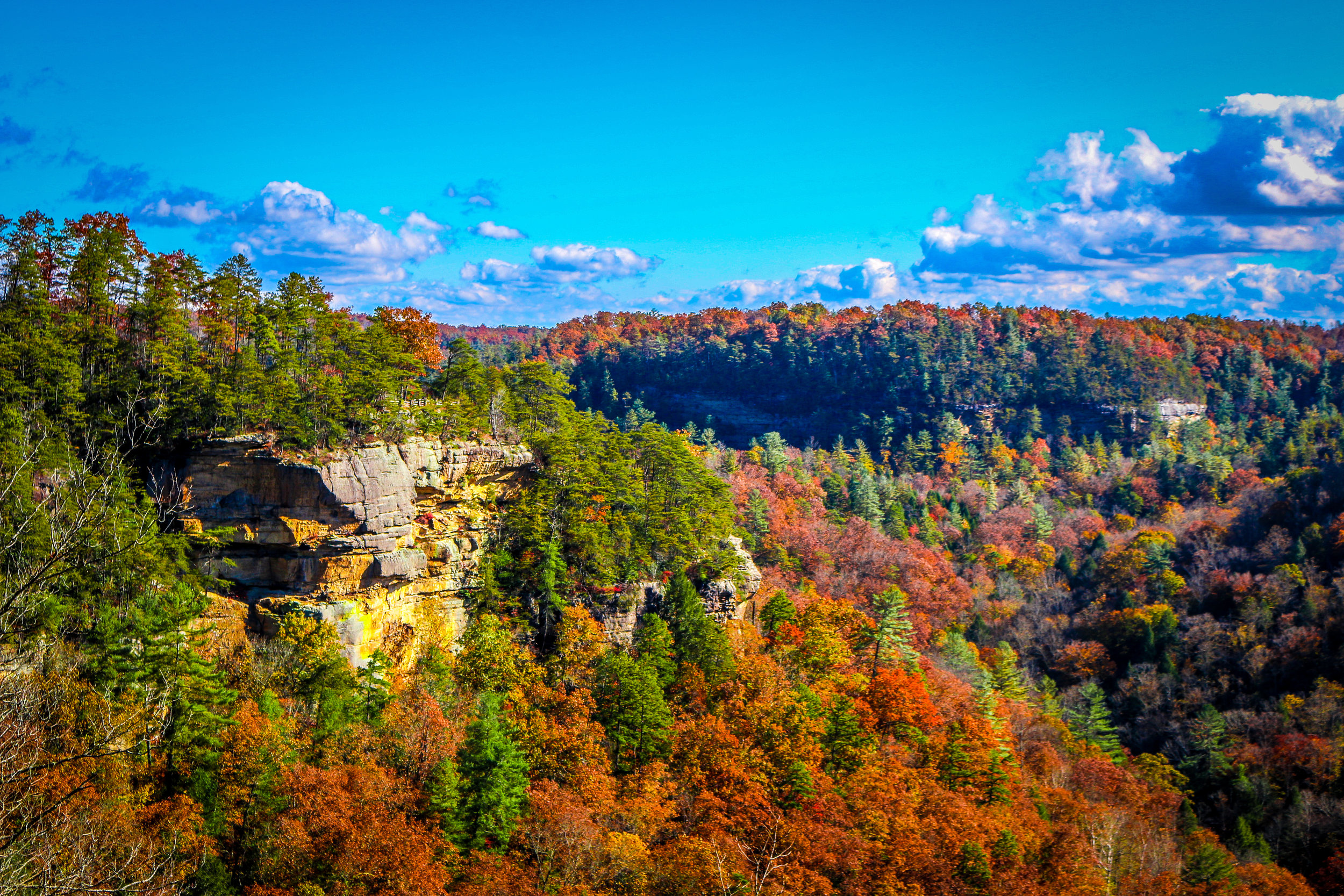 Stunning Nature Abounds in Kentucky!