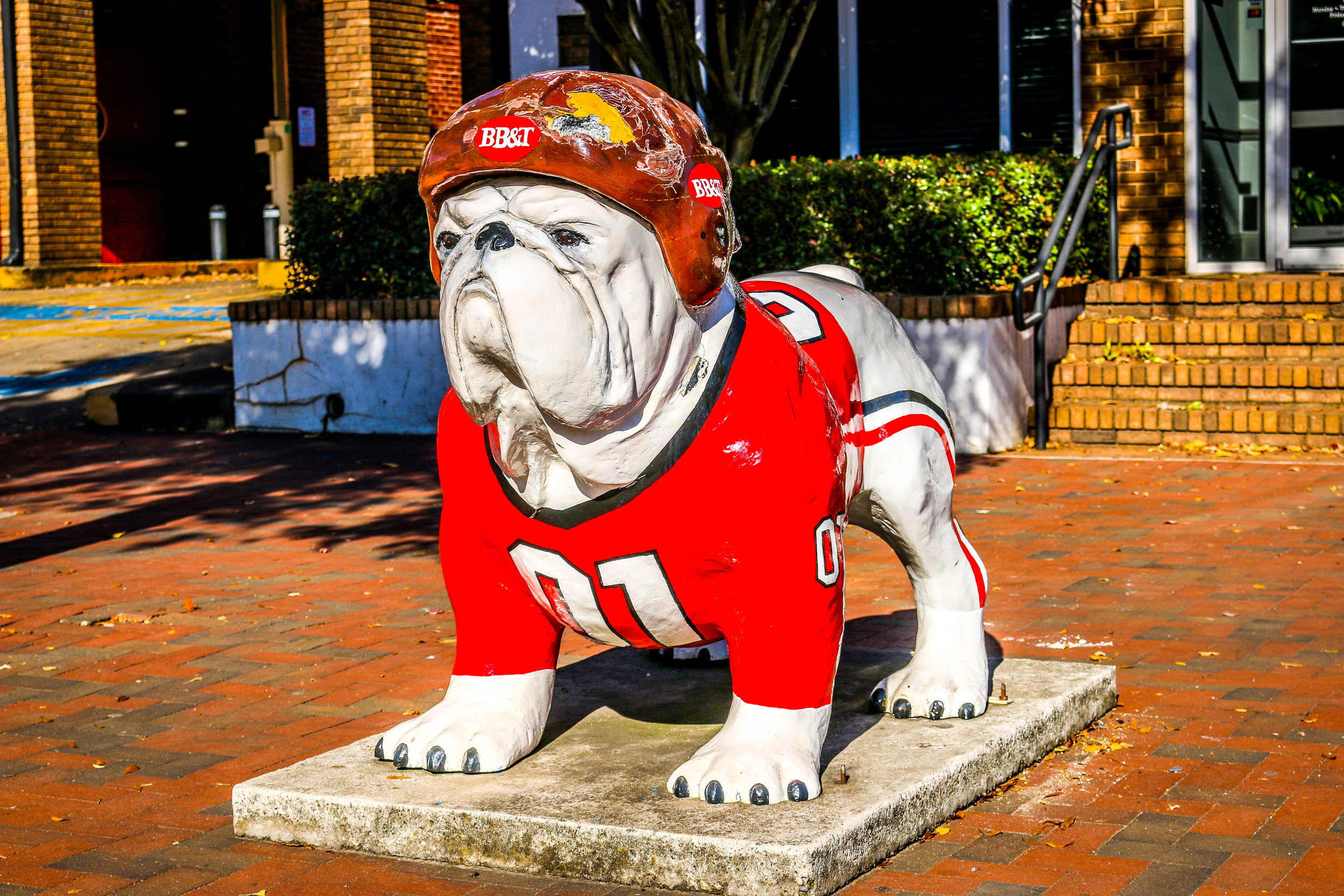 Go Dawgs, Don't Fake ANY Punts!