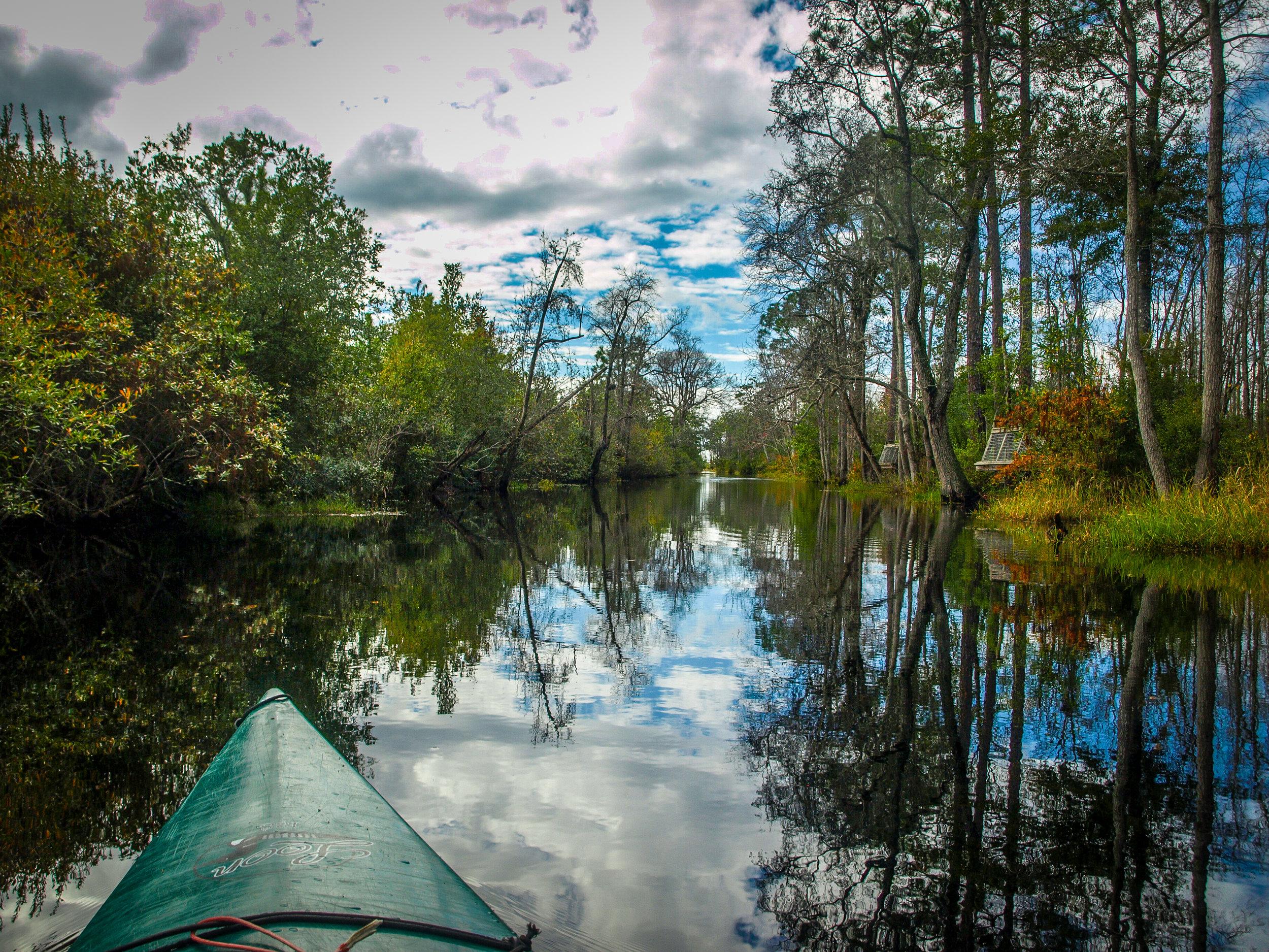 Okefenokee Swamp National Wildlife Refuge Georgia GA