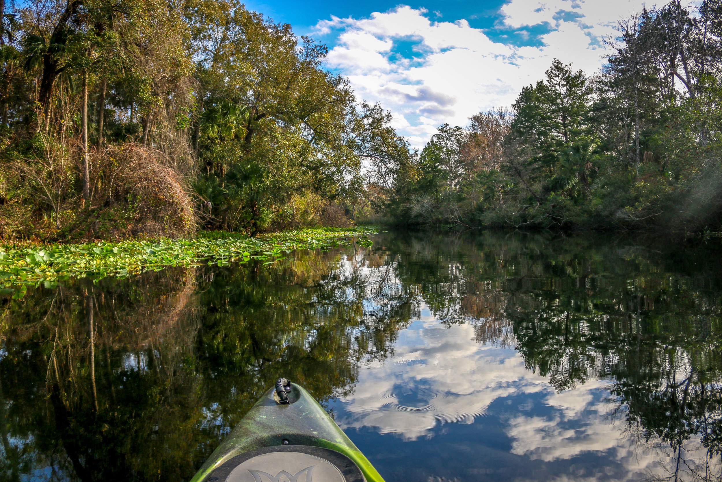 kayaking alexander springs ocala national forest