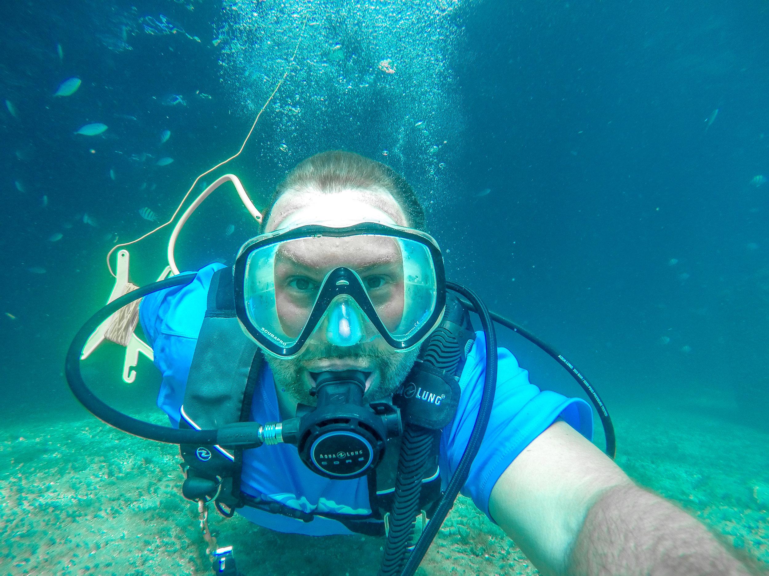 Diving the Blue Heron Bridge