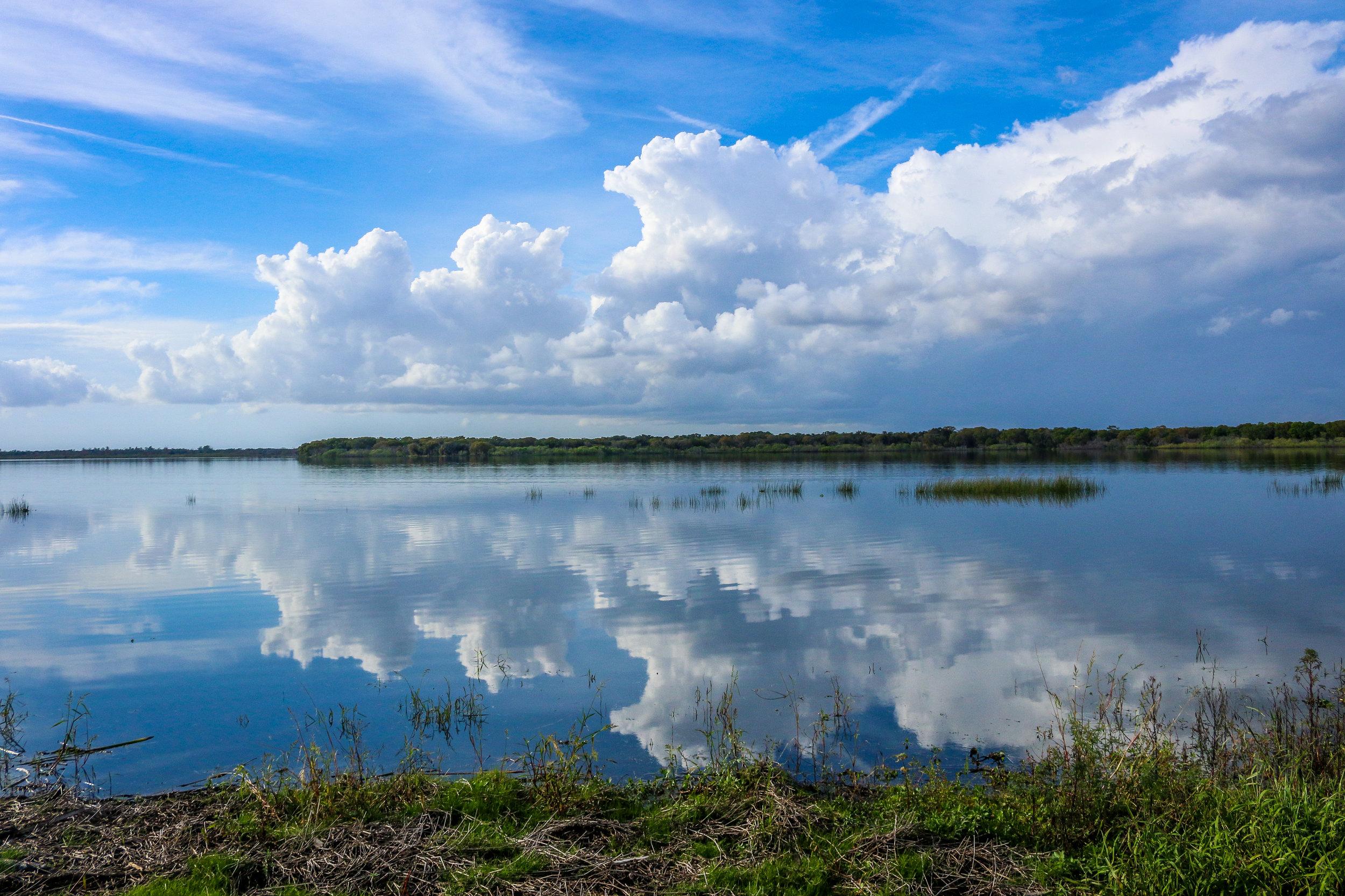 Reflections at Myakka River State Park