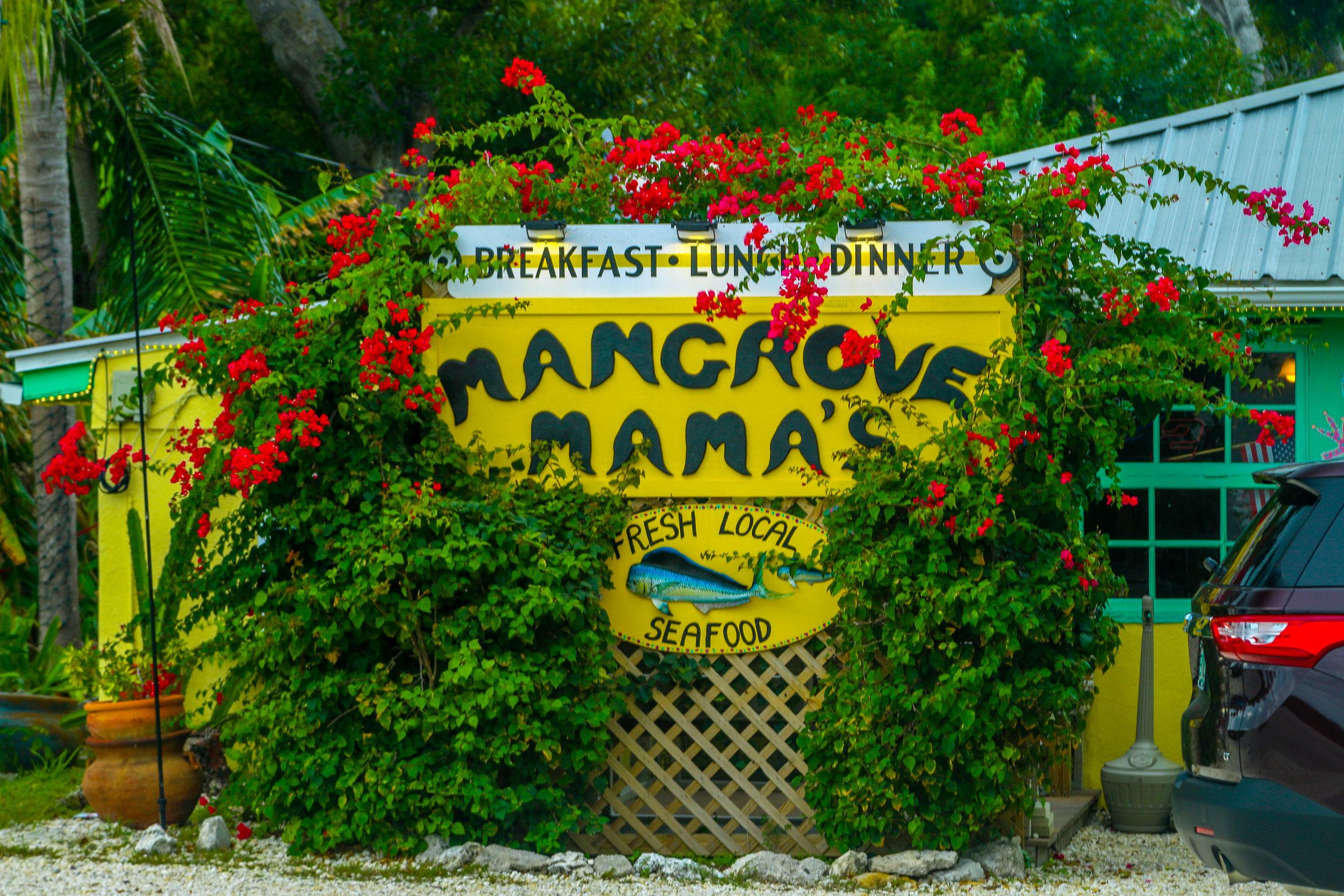 mangrove mama's sugarloaf key florida