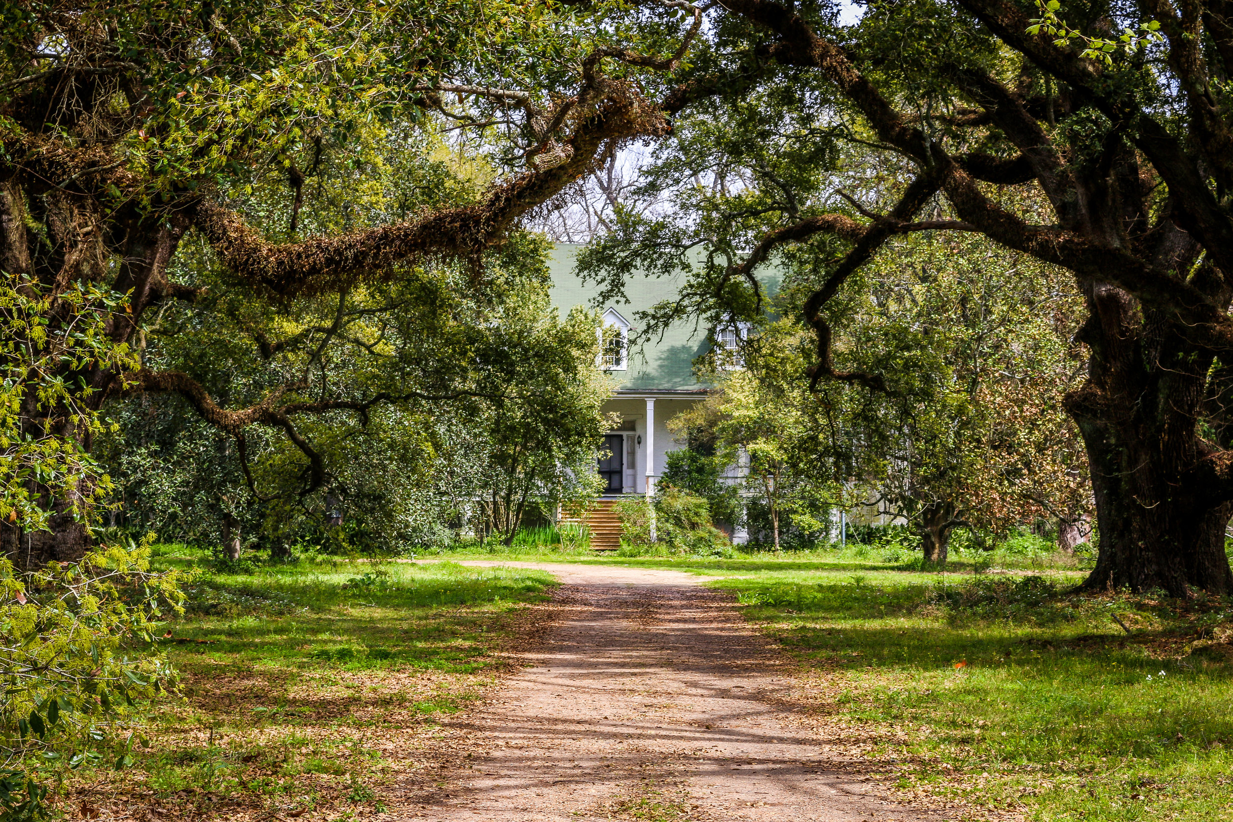 Magnolia's Big House