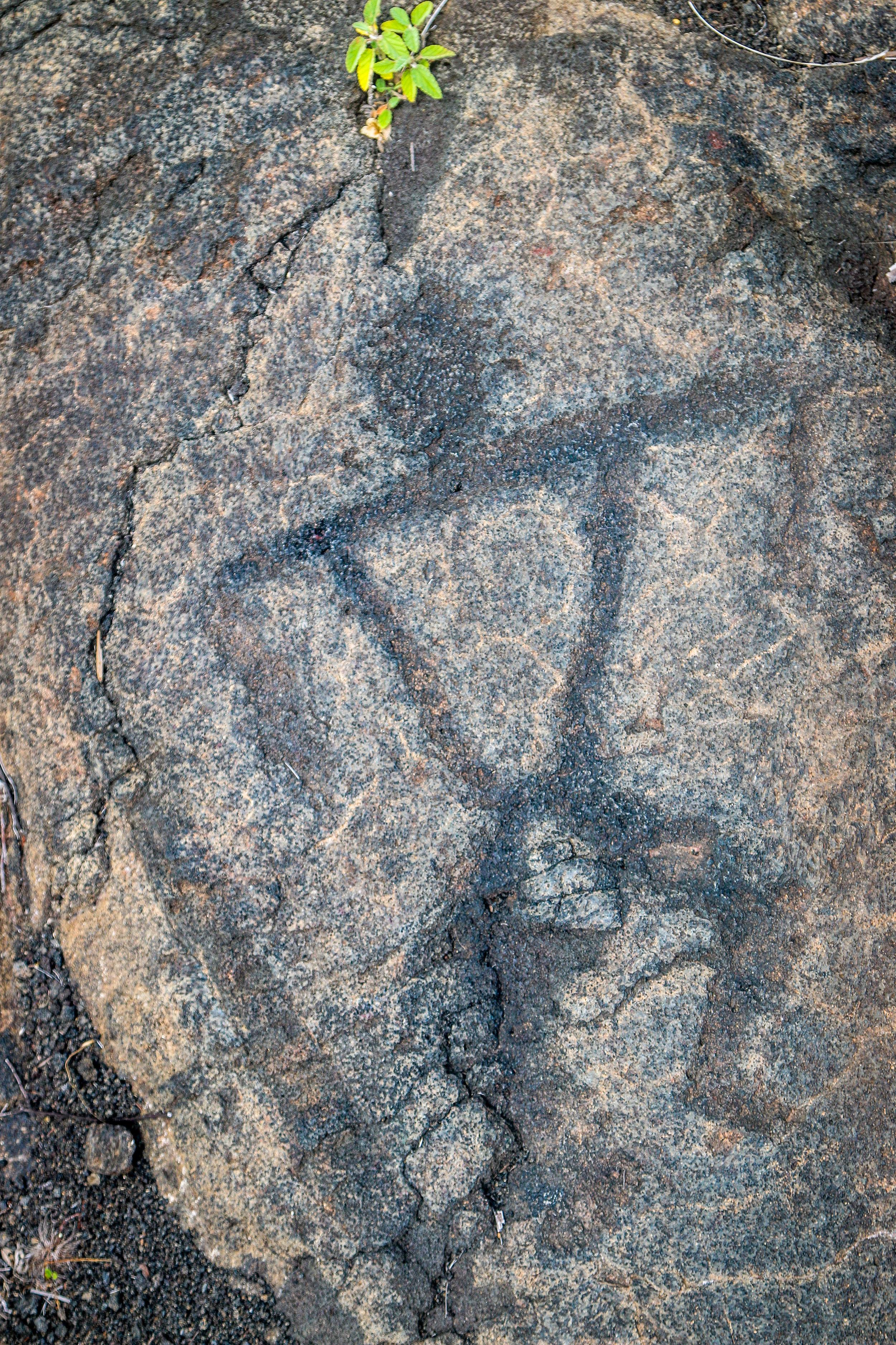 More Incredible Petroglyphs