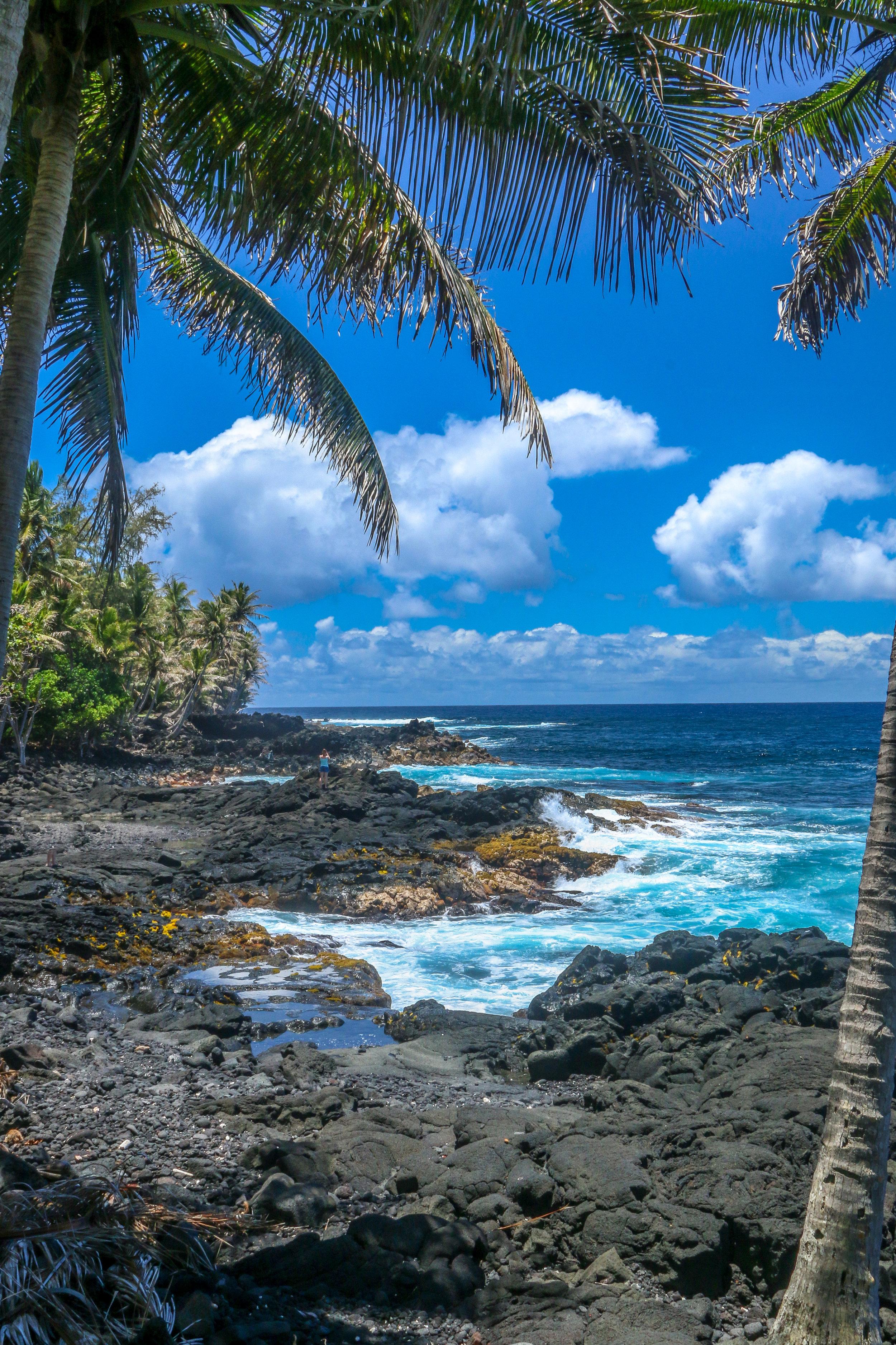 Hawaii HI Big Island Photos Photography ocean view palm trees