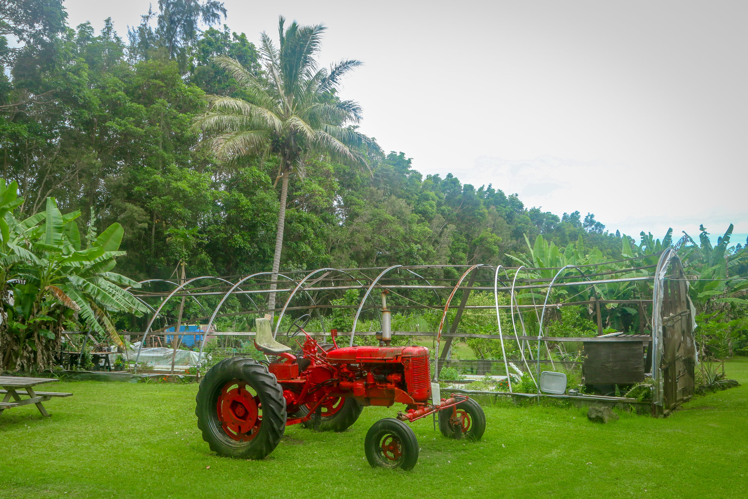 Hawaii HI Big Island Photos Photography Red Tractor Farm