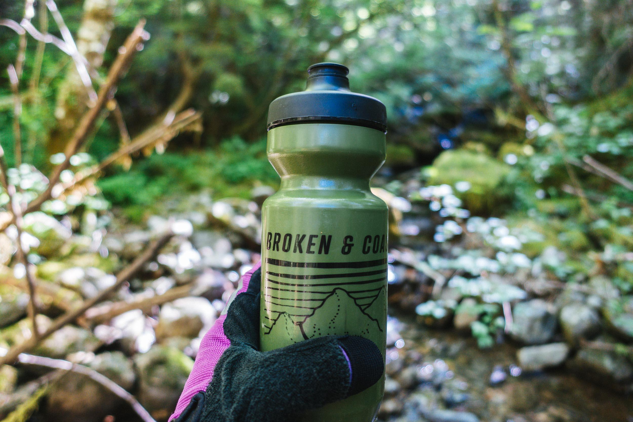Broken_Bottles_Moss_2.jpg