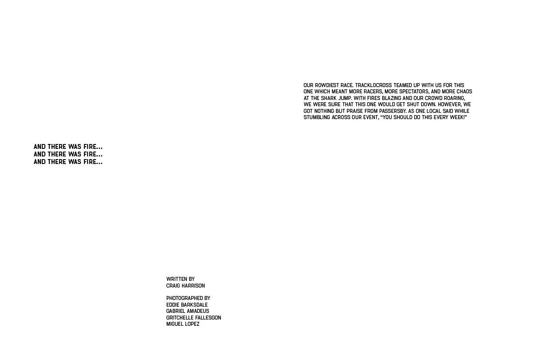 Cobra_Book_Final22.jpg