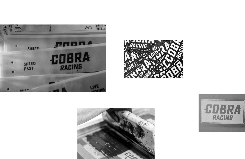 Cobra_Book_Final91.jpg