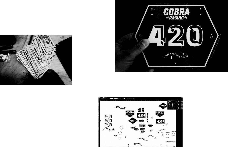 Cobra_Book_Final92.jpg
