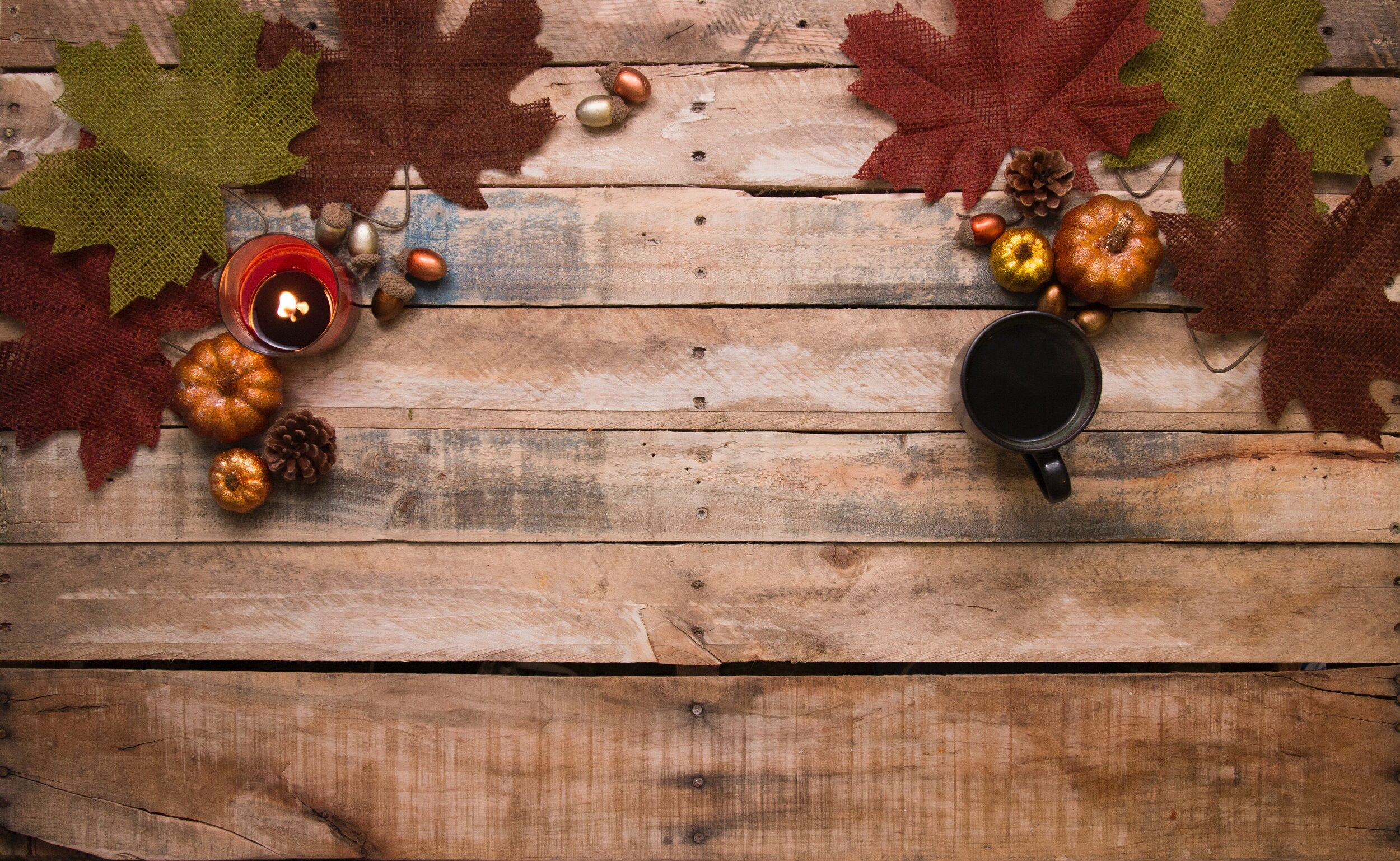 acorns-autumn-decoration-beverage-730286.jpg