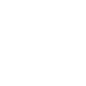 BudweiserBW.png