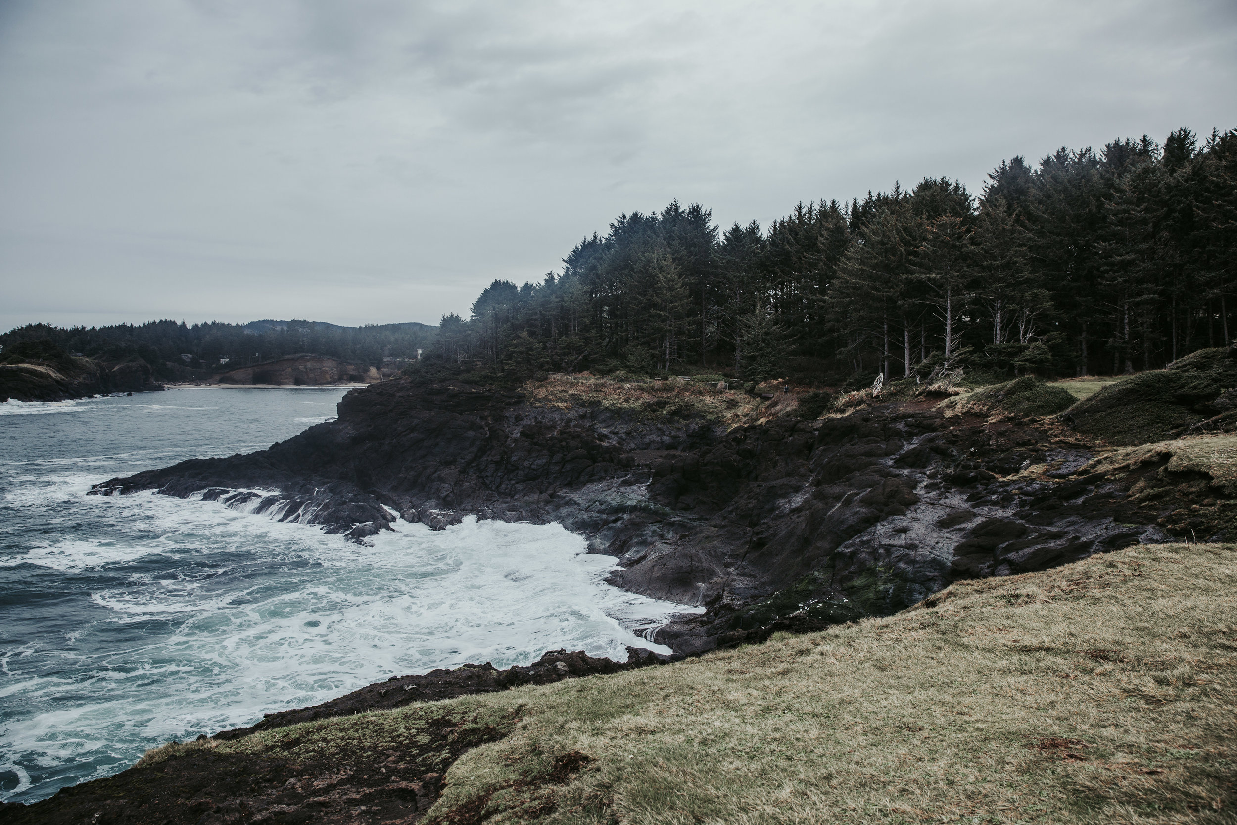 Oregon Coast Wedding Photographers (3).jpg
