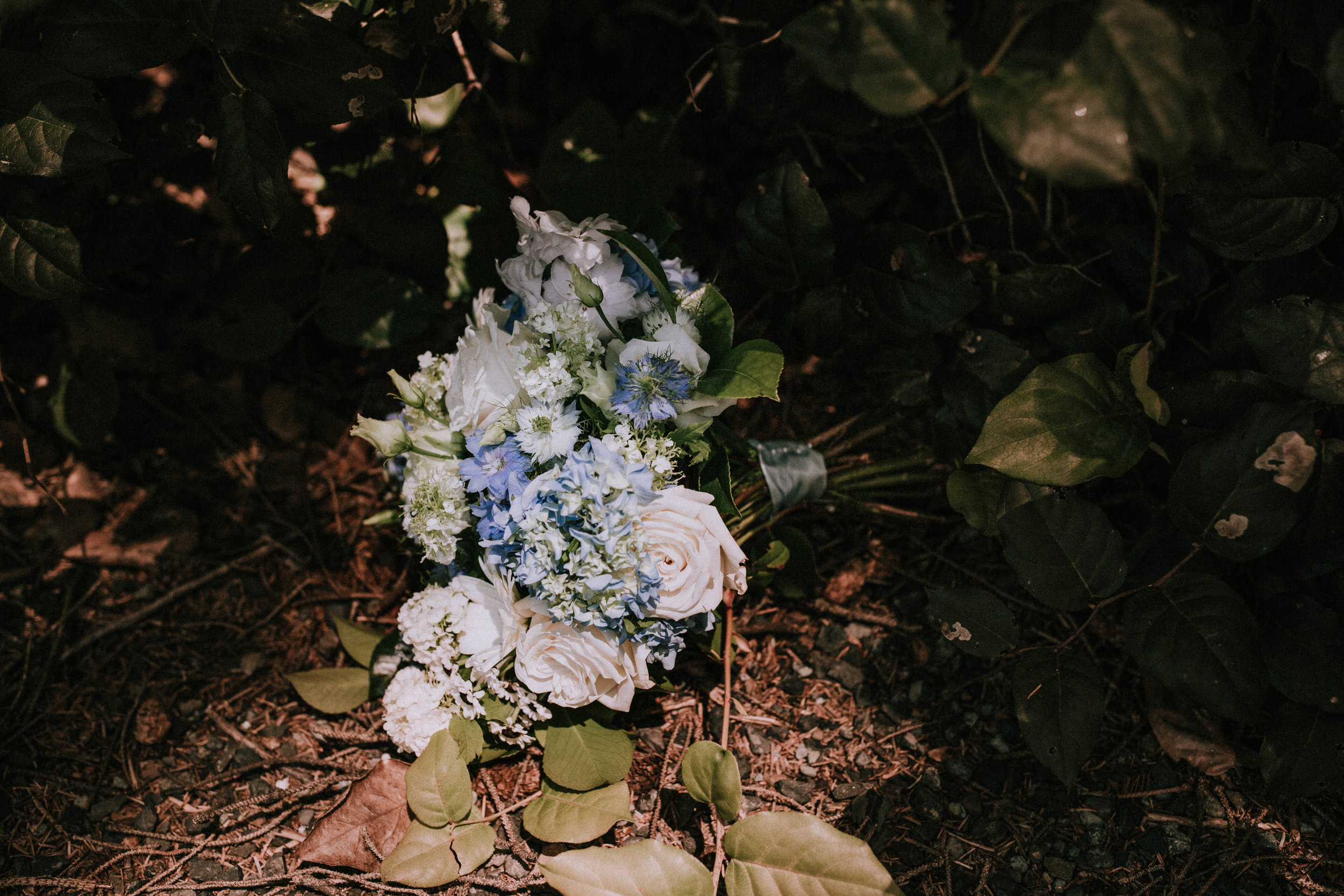 RusticBloomPhotography(250).jpg