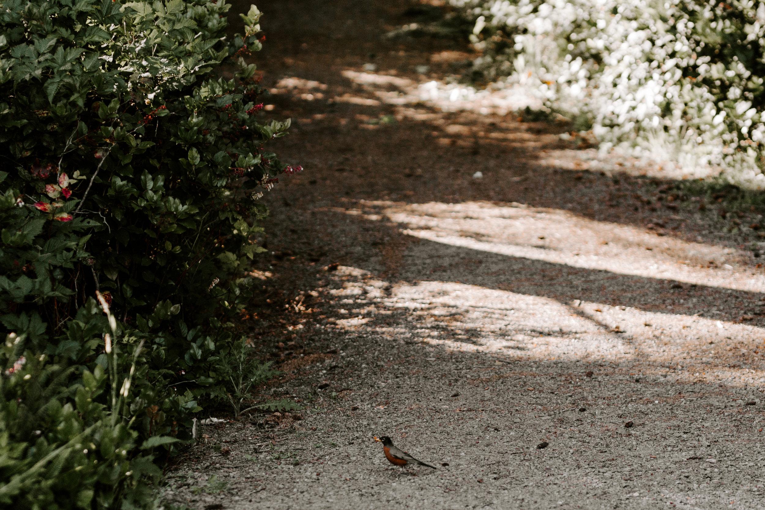 Oregon Wedding Venue | Camp Clark | Rustic Bloom Photography