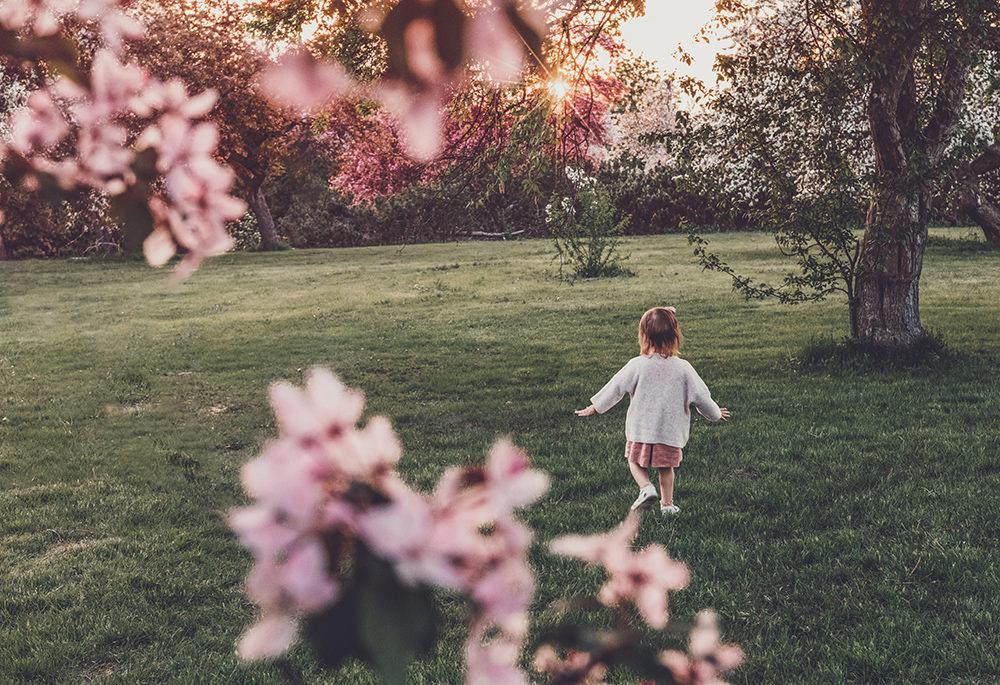 ottawa-arboretum-blossom-may-family-photography.jpg