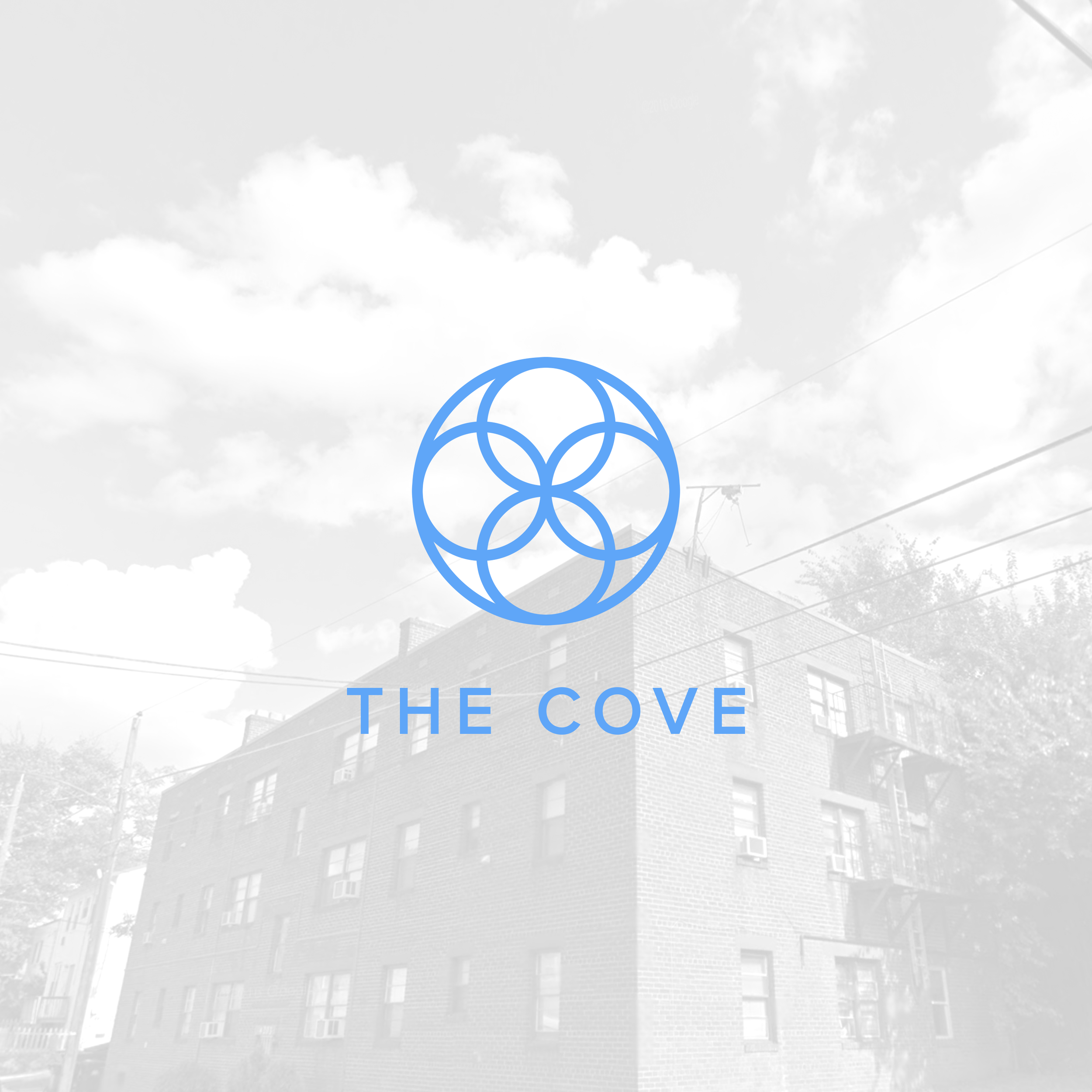 the-cove-project-covers.png