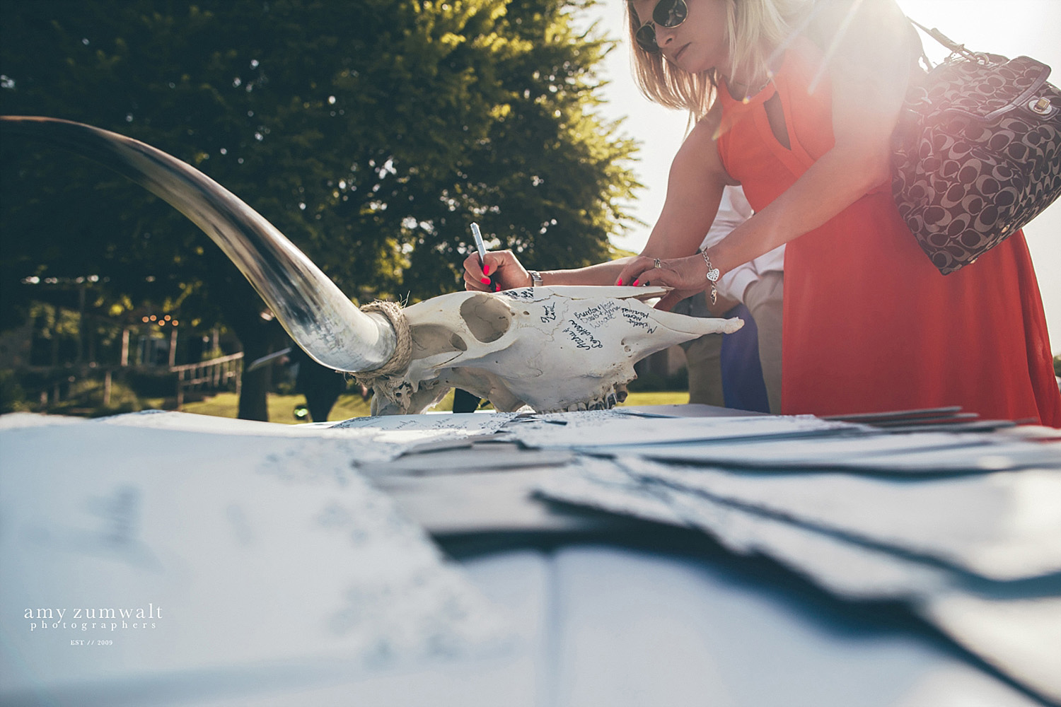 Guest book cow skull
