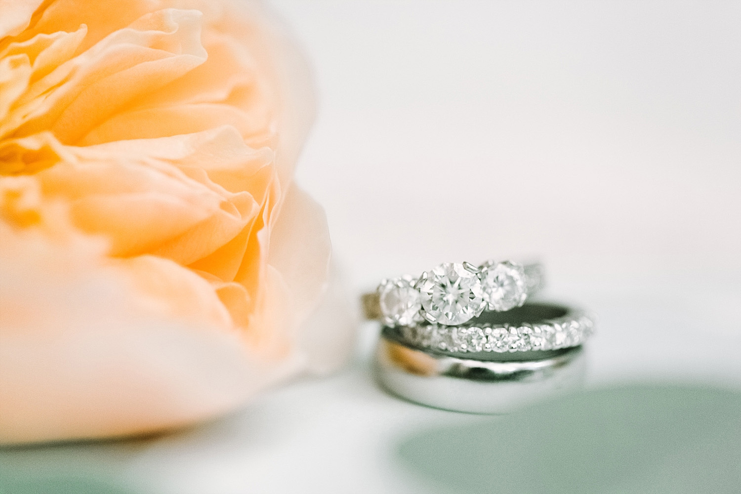 wedding ring picture with apricot rose
