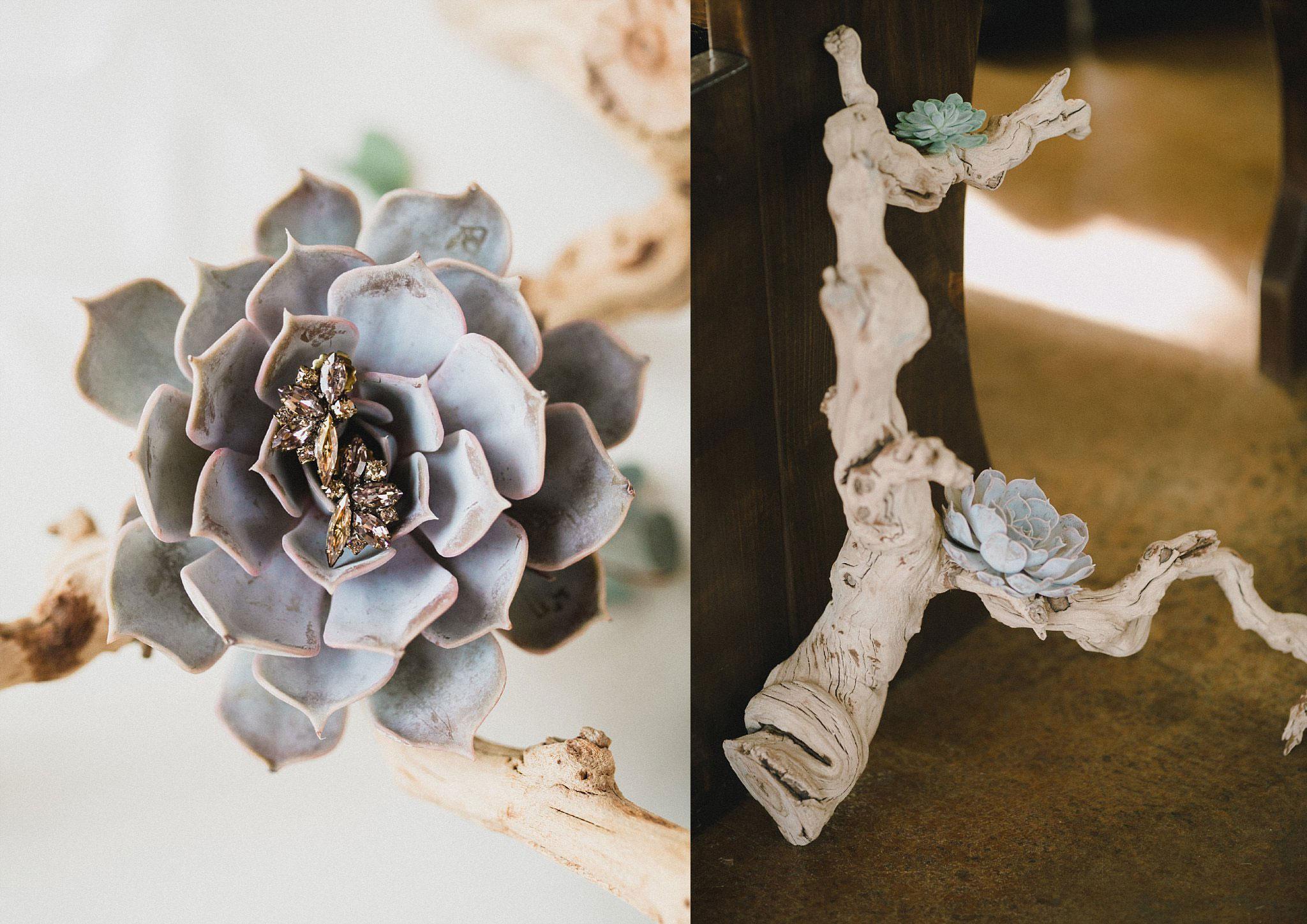 Succulent ring detail photo