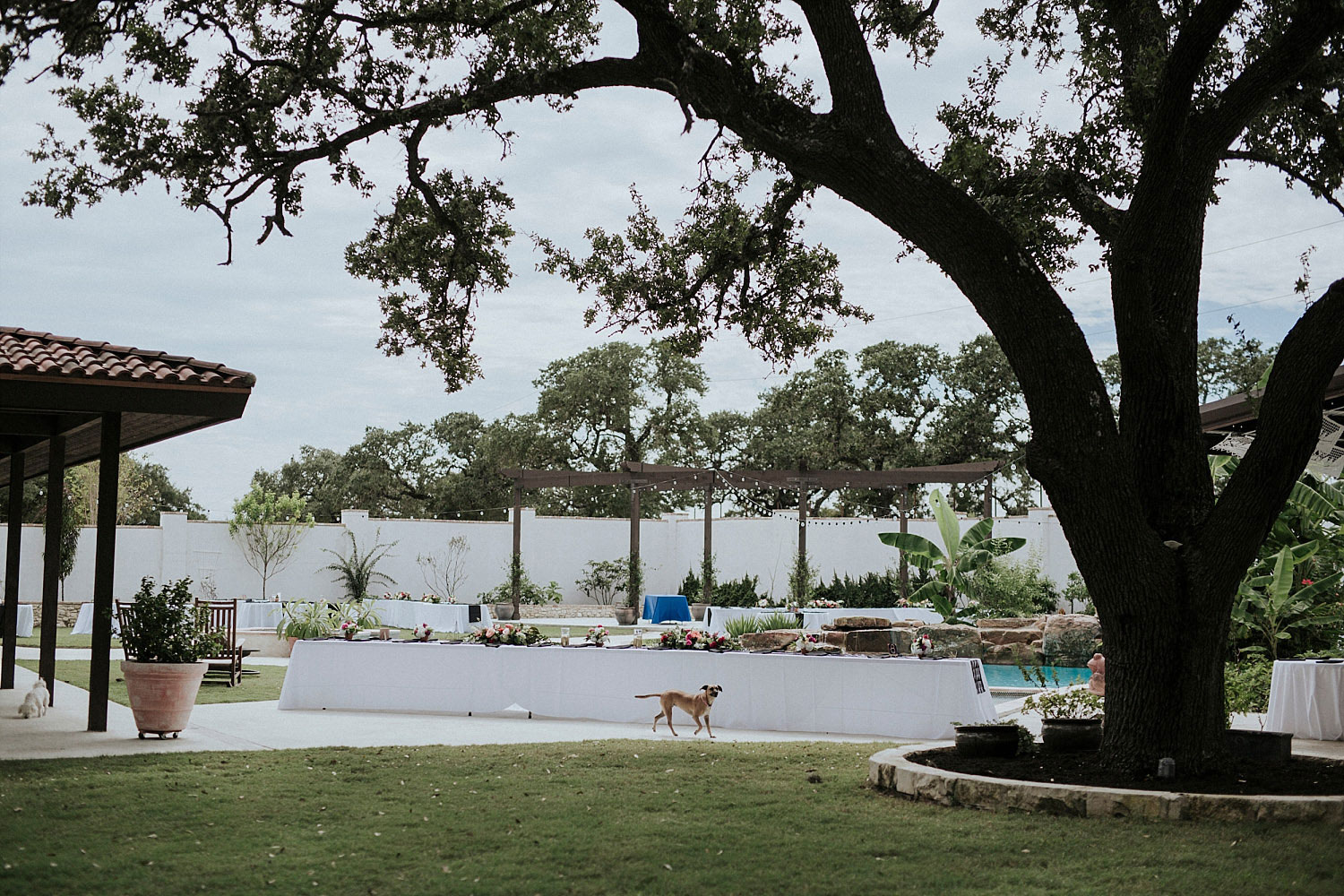 Garden Grove Wedding and Event venue wedding by the pool