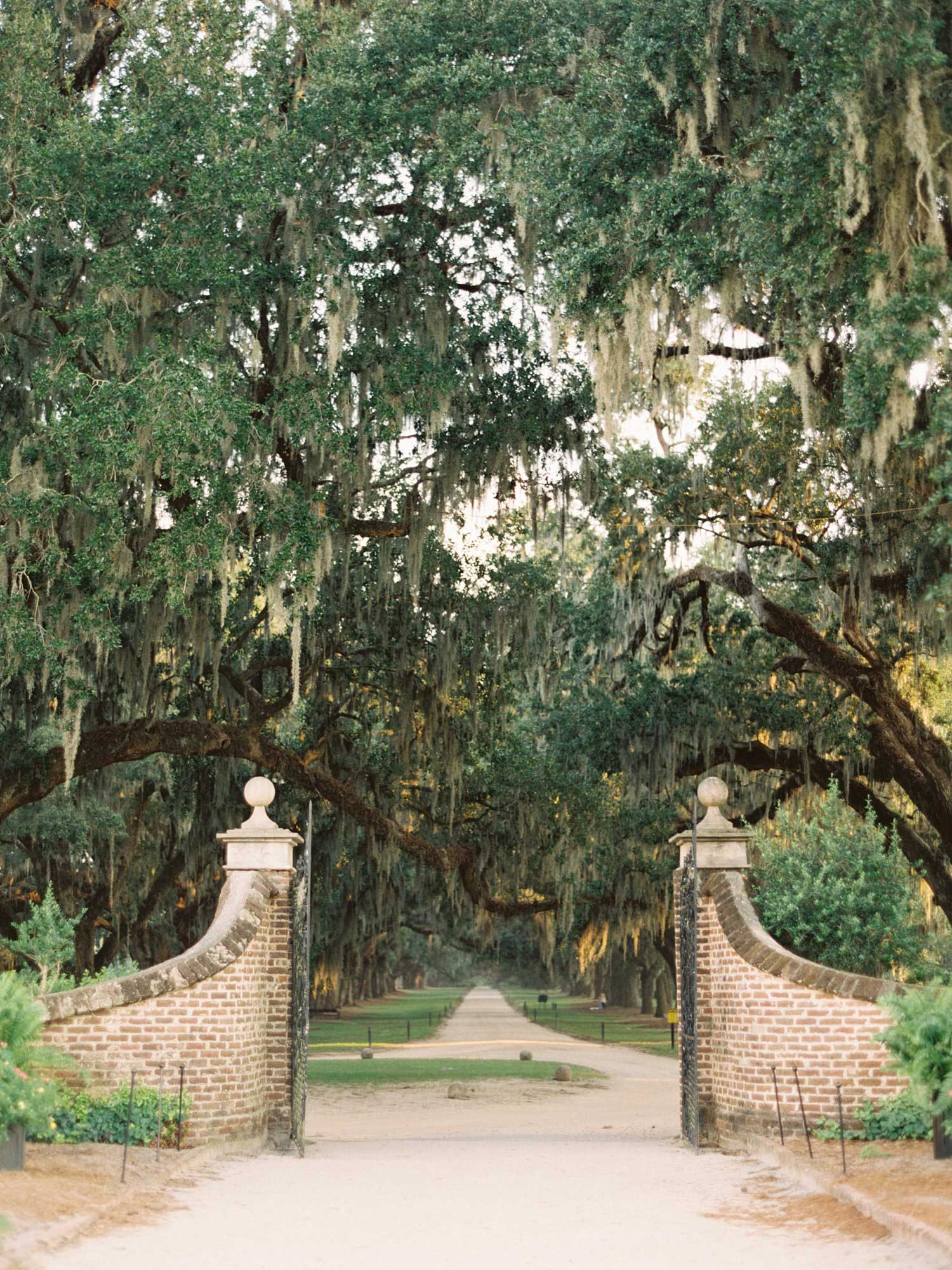 Boone Hall Plantation Front Gate entrance