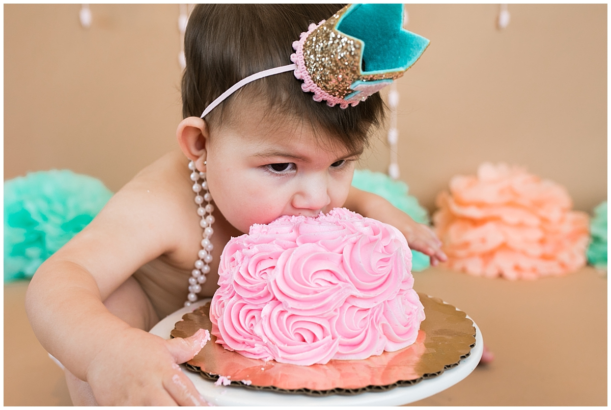 South Jersey Cake Smash Photographer, Medford Child photographer