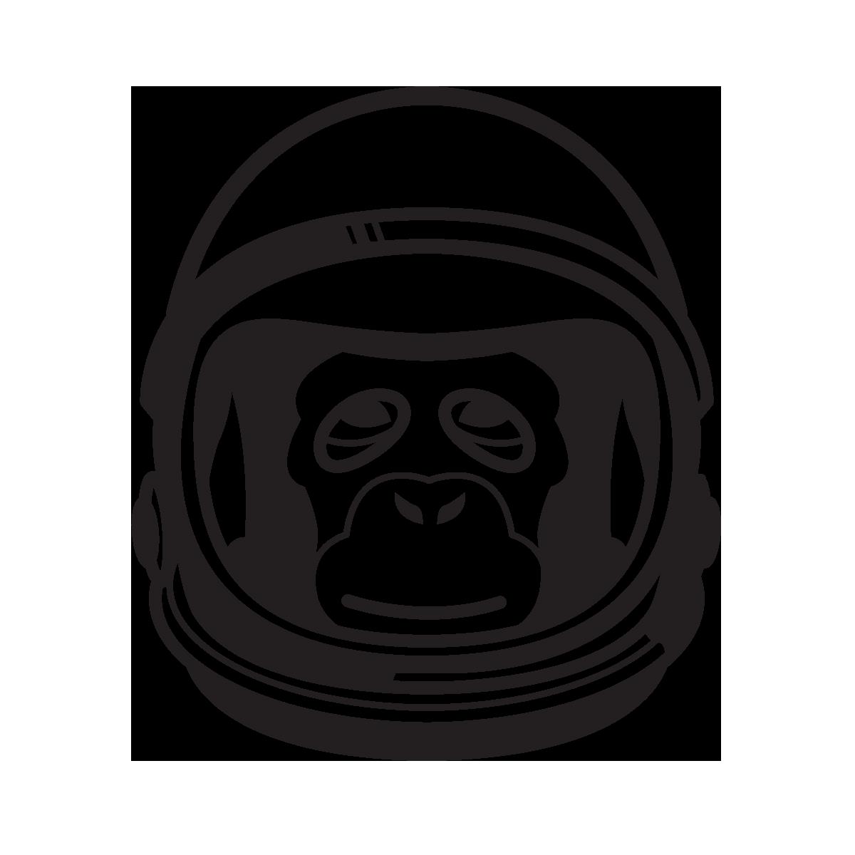 Astrochimp.png