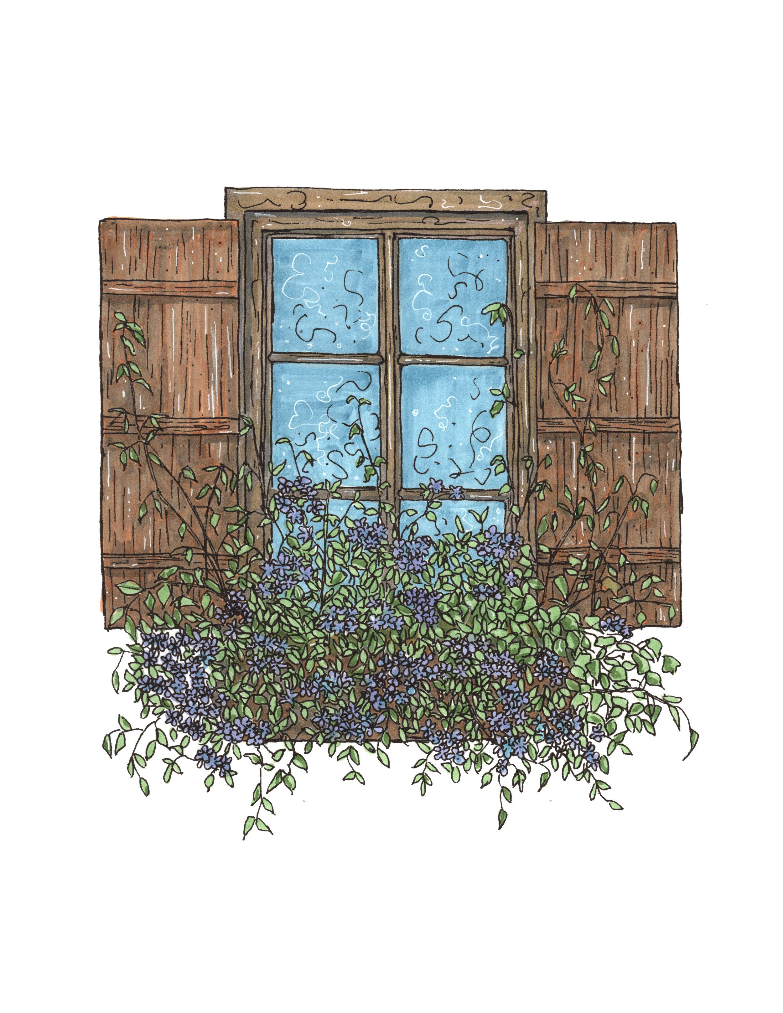 window 2colour print.jpg