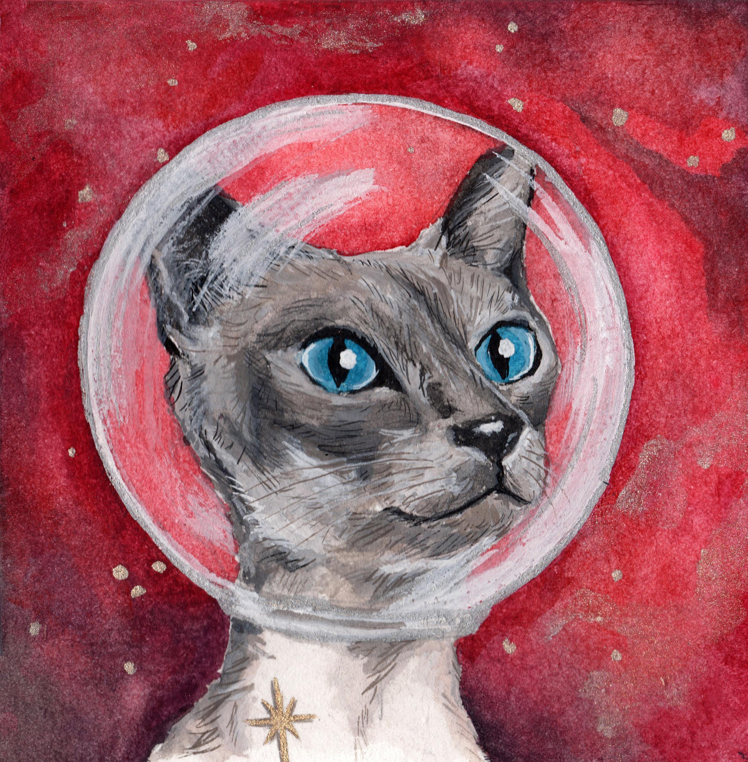 Kitten Mission to Mars.jpeg