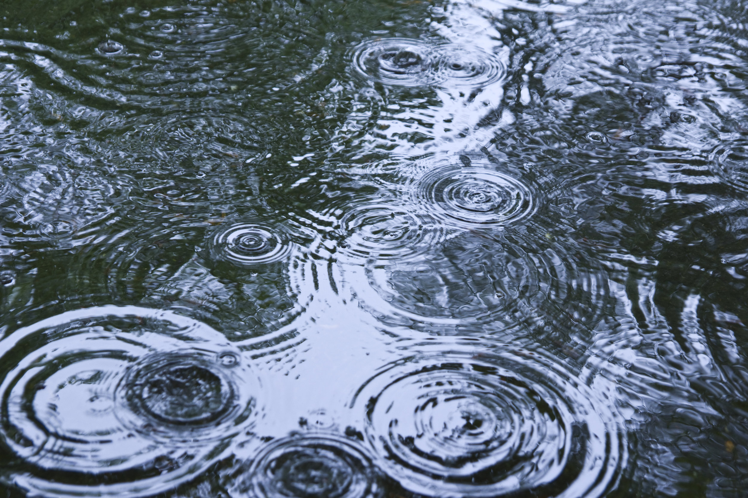 Environmental laboratory testing services for Industrial General Permit (IGP) stormwater requirements