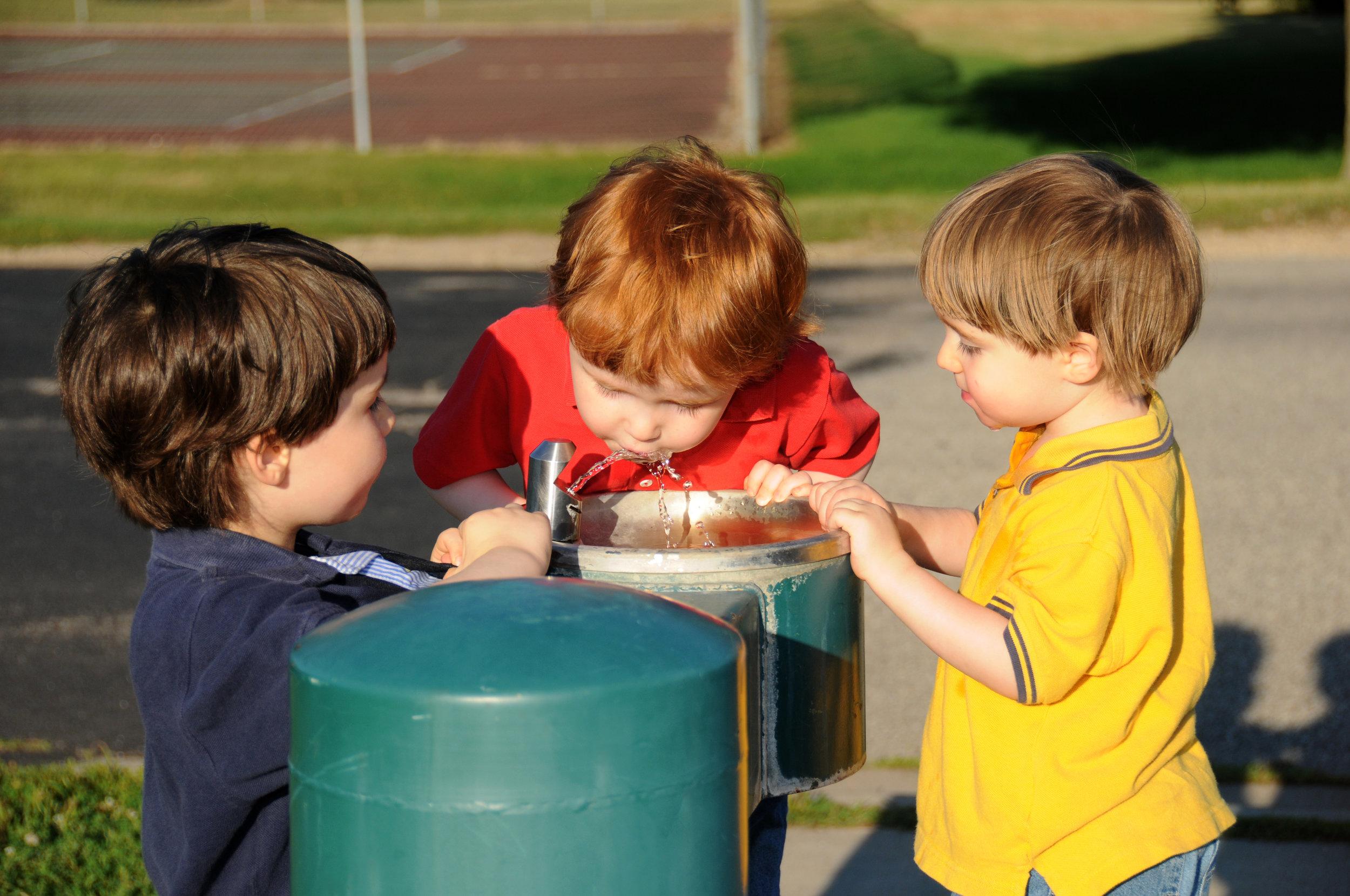 Drinking water lead testing in schools