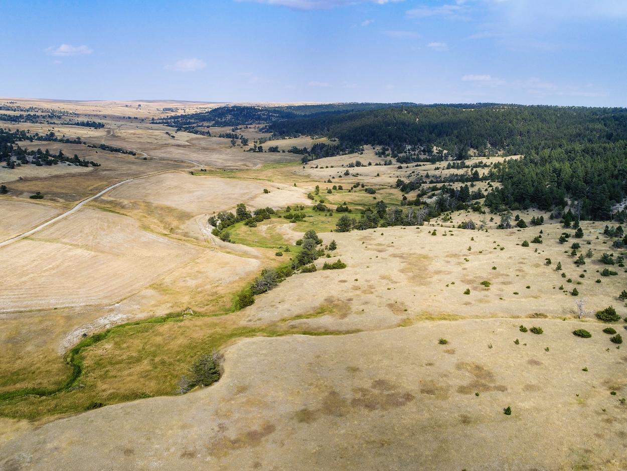 58-East Fork Ranch Land.JPG
