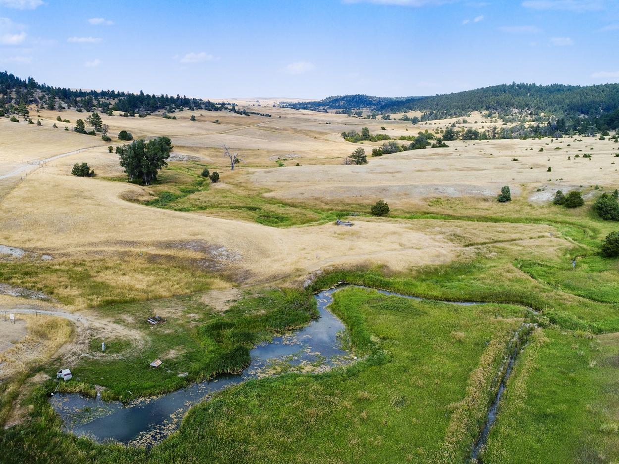57-East Fork Ranch Land.JPG