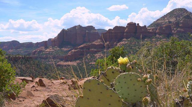 Views in Sedona CANNOT be beat ❤️ #sedona #Arizona #documentary #film