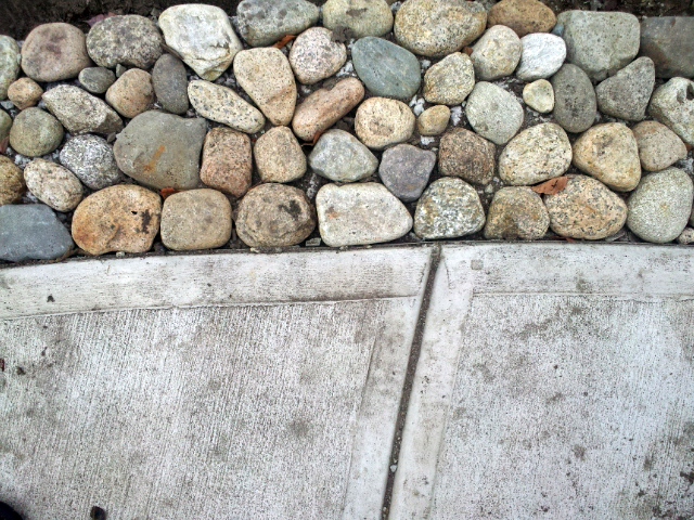 It's all about the details, and in Quincy we added this riverstone edge to the walks, allowing stormwater runoff to the rain gardens while preventing erosion AND looking great.