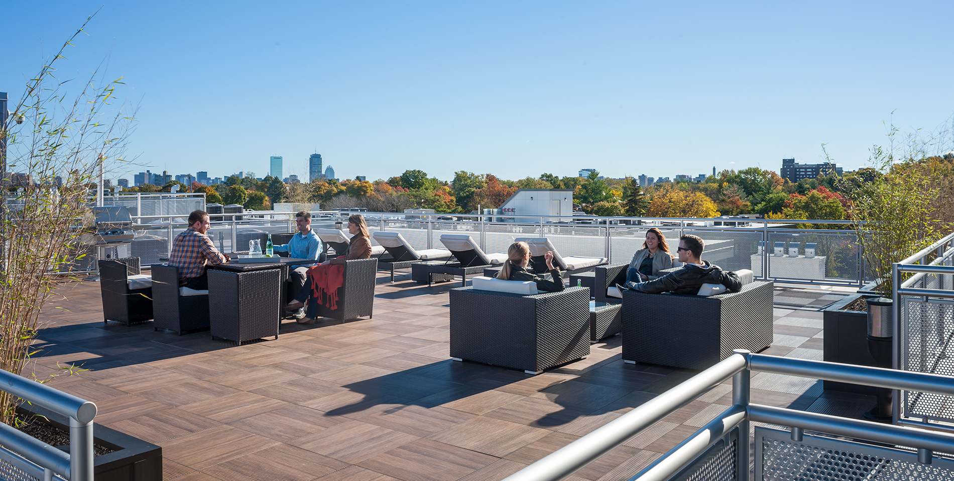 We enjoy great views of Boston from the Allston Green District's Eco rooftop. Self-watering planters filled with Clumping Bamboo, ornamental grasses, and trailing vines screen rooftop utilities.